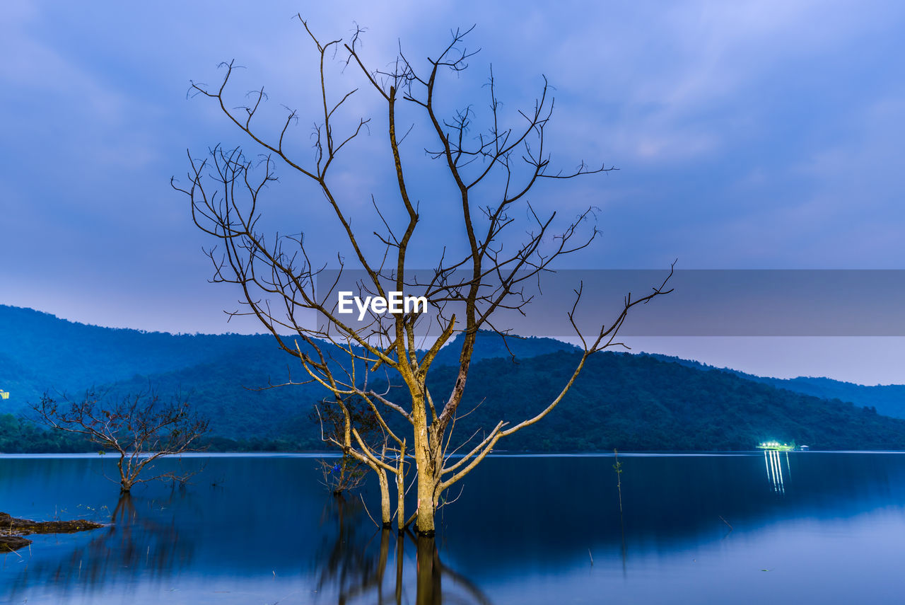 lake, tranquility, water, scenics, tranquil scene, beauty in nature, nature, bare tree, mountain, tree, reflection, idyllic, no people, outdoors, blue, day, sky, branch
