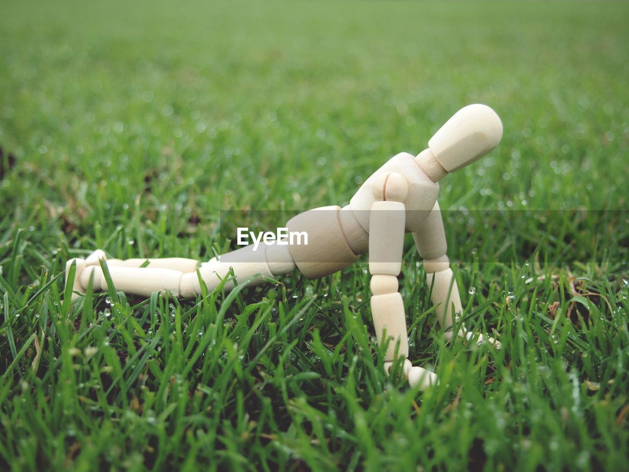 grass, plant, field, green color, nature, day, no people, human representation, land, white color, representation, close-up, figurine, wood - material, growth, selective focus, toy, outdoors, sport, focus on foreground