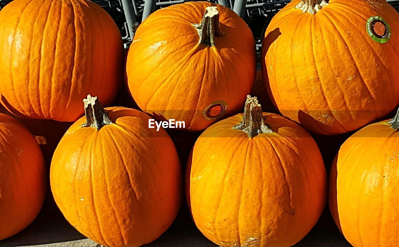 food and drink, food, orange color, vegetable, pumpkin, freshness, healthy eating, wellbeing, no people, halloween, autumn, celebration, still life, large group of objects, raw food, market, close-up, agriculture, for sale, organic, outdoors, ripe