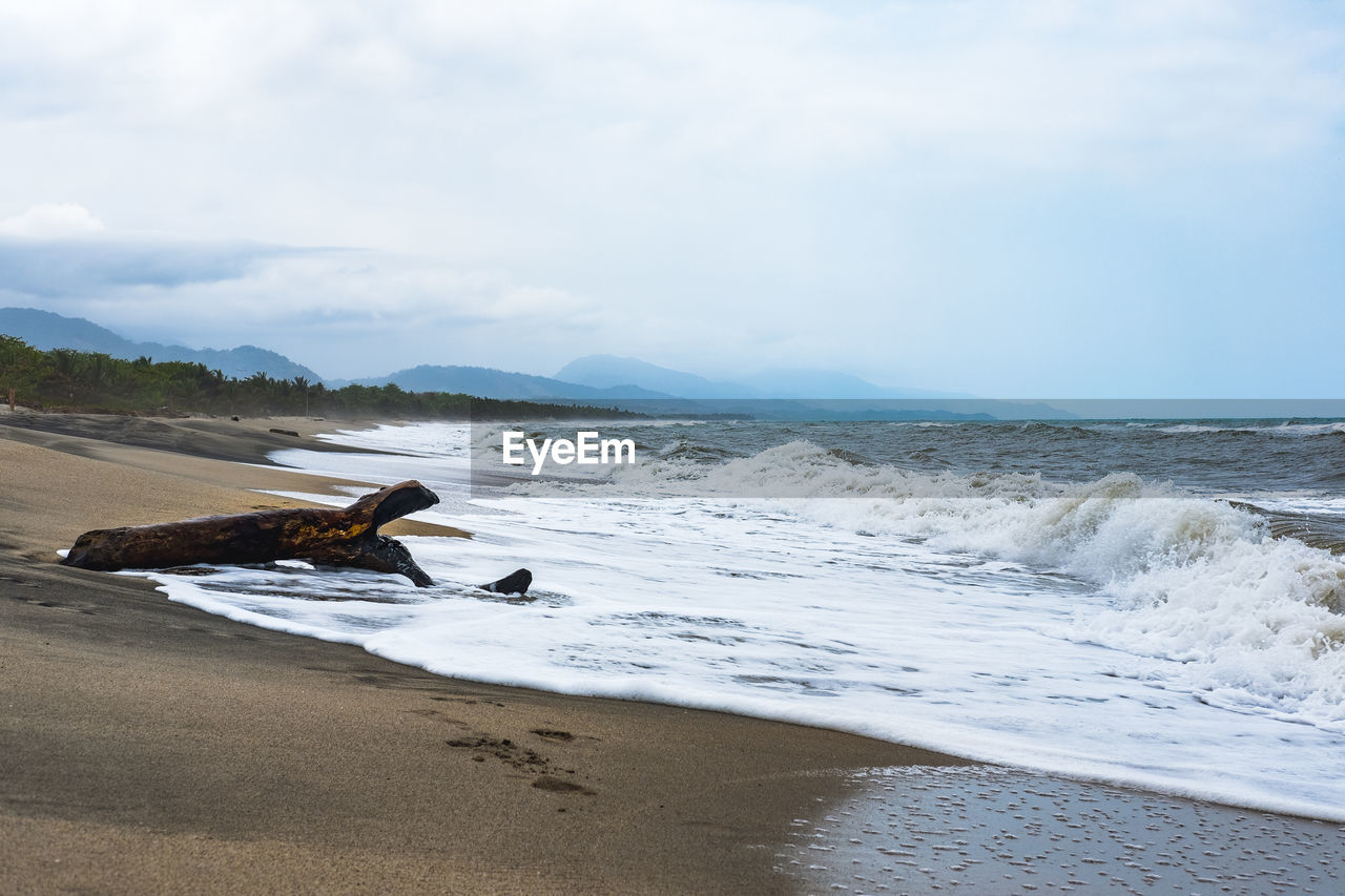 water, sea, beach, sky, land, motion, beauty in nature, scenics - nature, aquatic sport, sport, wave, nature, cloud - sky, day, surfing, sand, tranquil scene, non-urban scene, outdoors, horizon over water