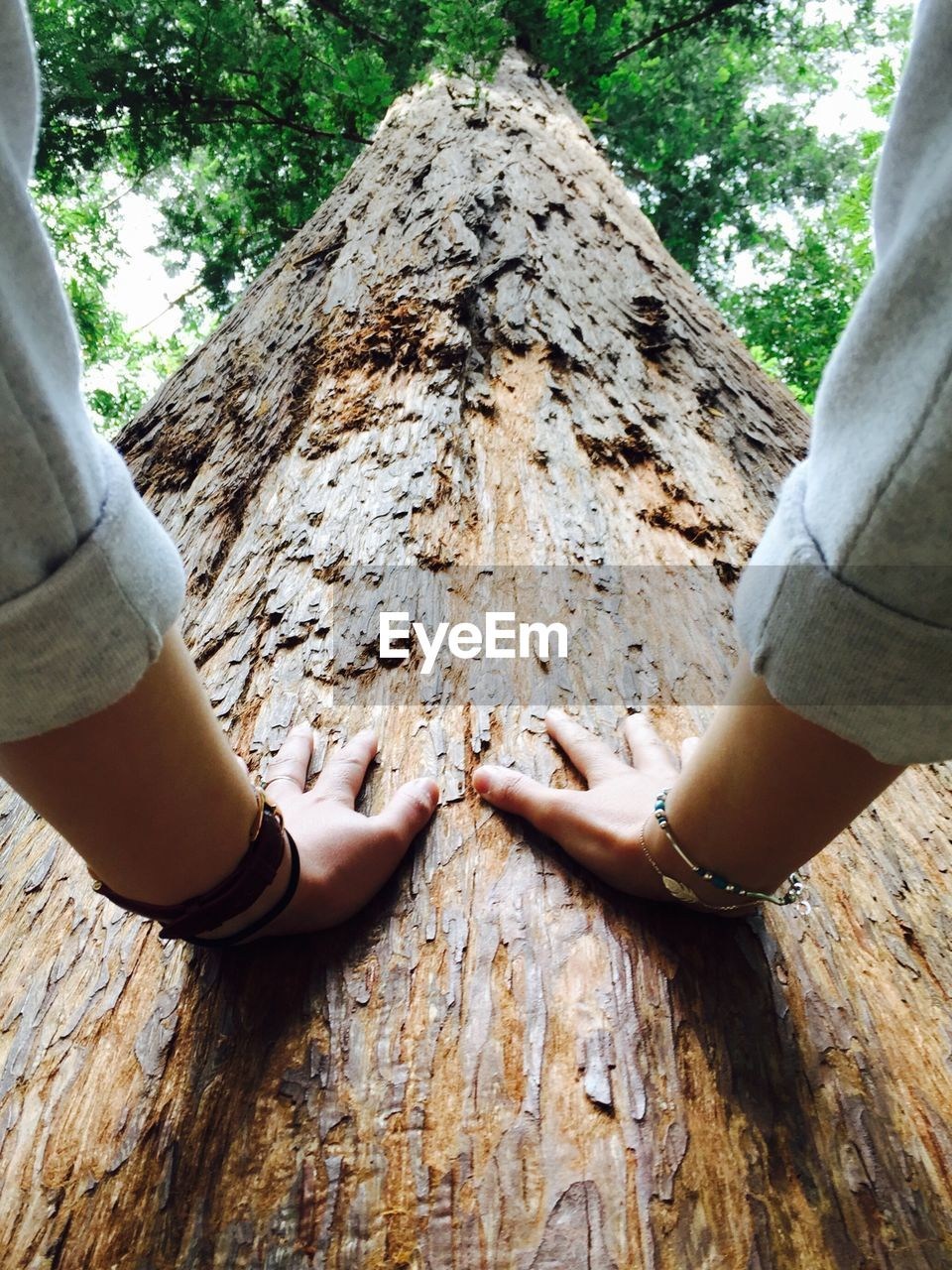 real people, human hand, two people, leisure activity, day, tree trunk, togetherness, tree, human body part, outdoors, lifestyles, wood - material, men, women, nature, friendship, childhood, bonding, close-up, people