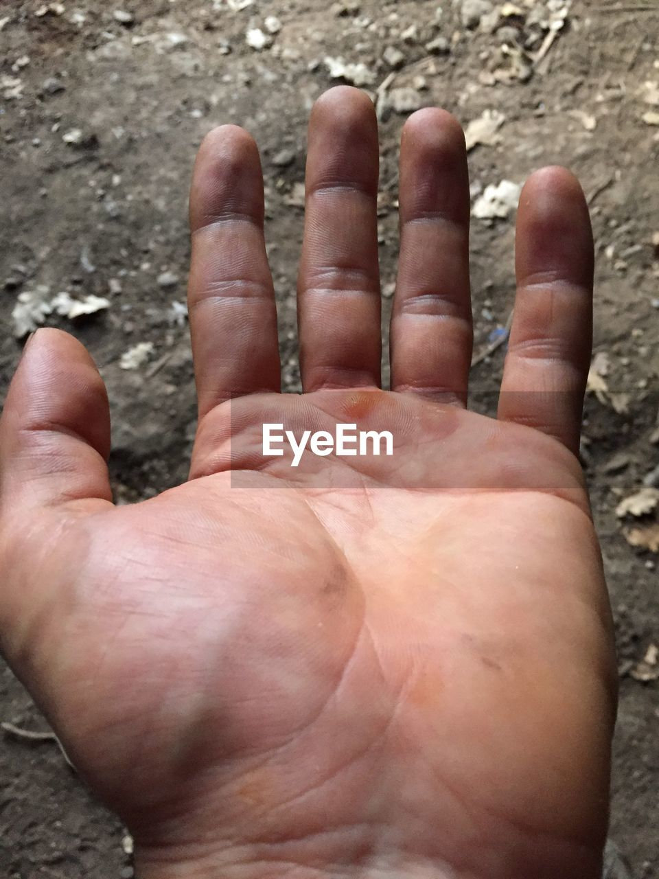 human body part, real people, one person, close-up, day, human hand, men, outdoors, people