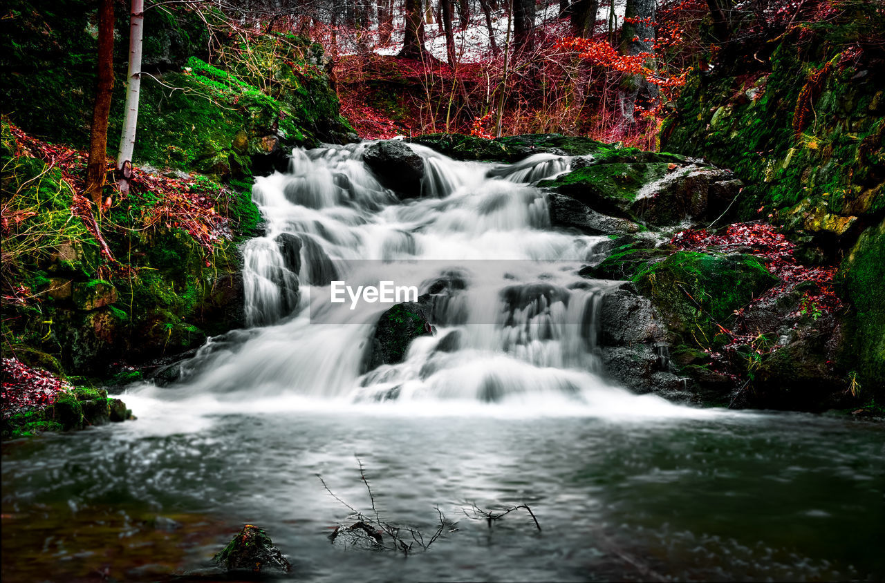 Low angle view of waterfall amidst trees