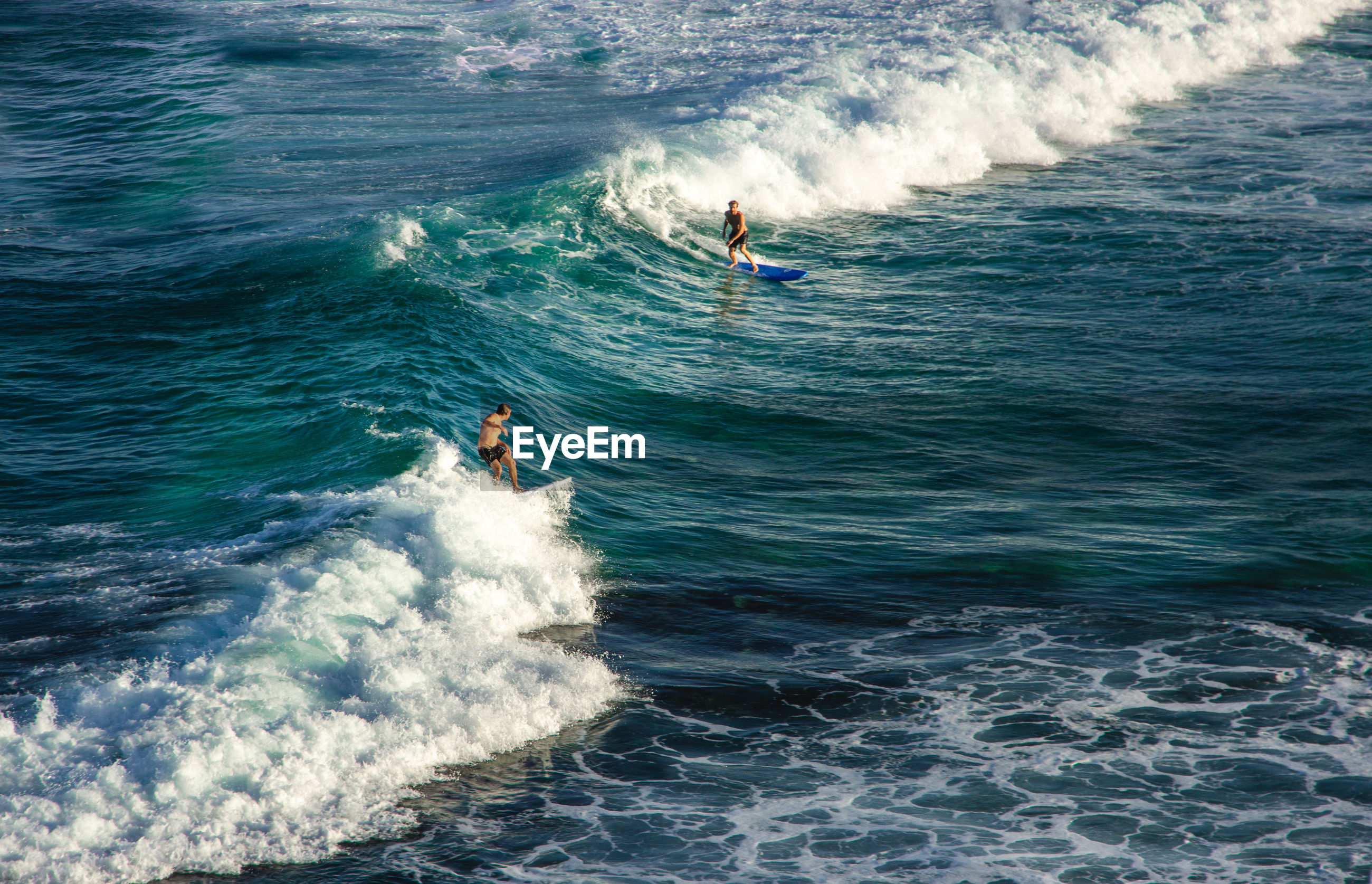 High angle view of people surfboarding on waves in sea
