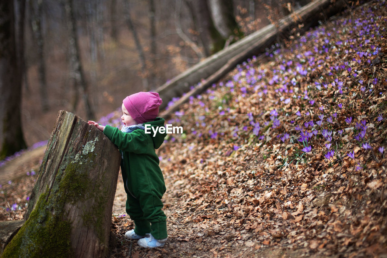 Cute toddler baby wearing green overall in forest full of wild irises. spring blossom in the forest