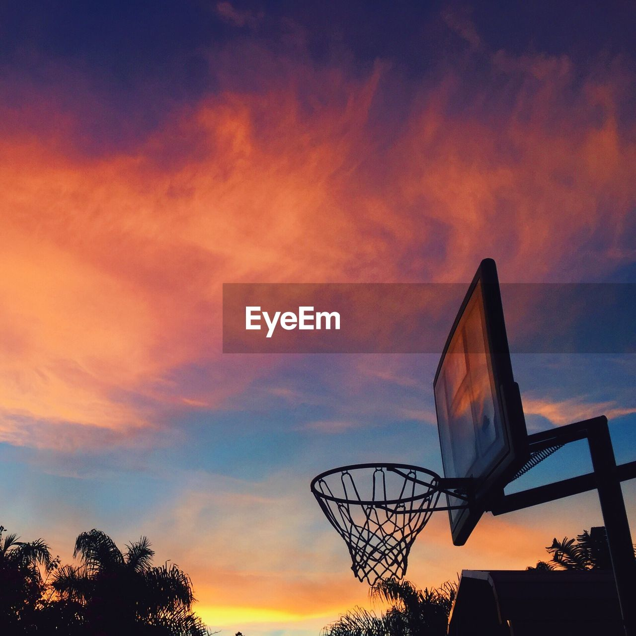 sunset, orange color, sky, cloud - sky, silhouette, beauty in nature, basketball hoop, nature, tree, low angle view, basketball - sport, no people, outdoors, day