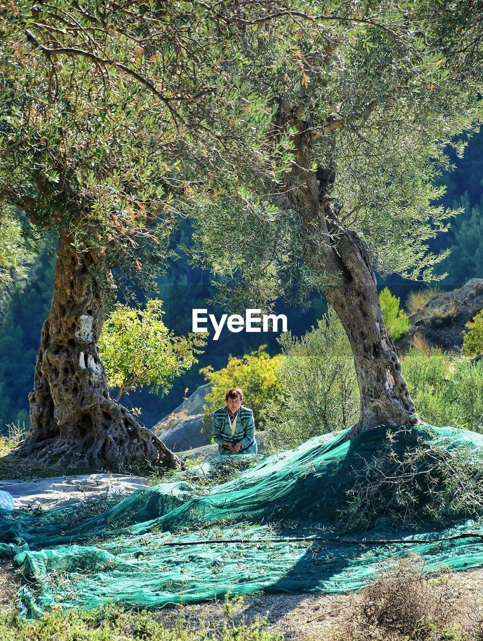MAN TREE IN WATER