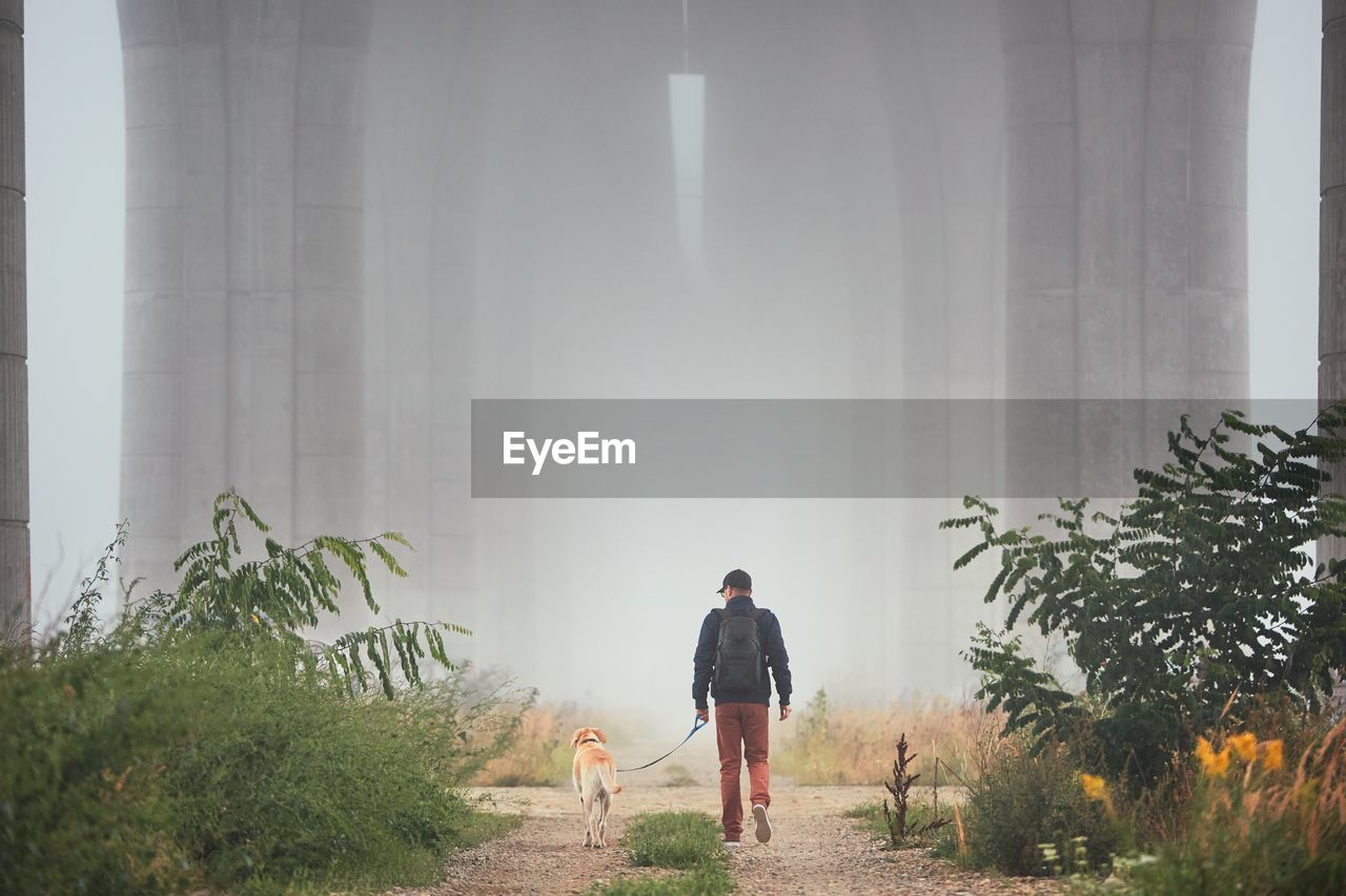 Rear View Of Young Man Walking With Dog During Foggy Weather