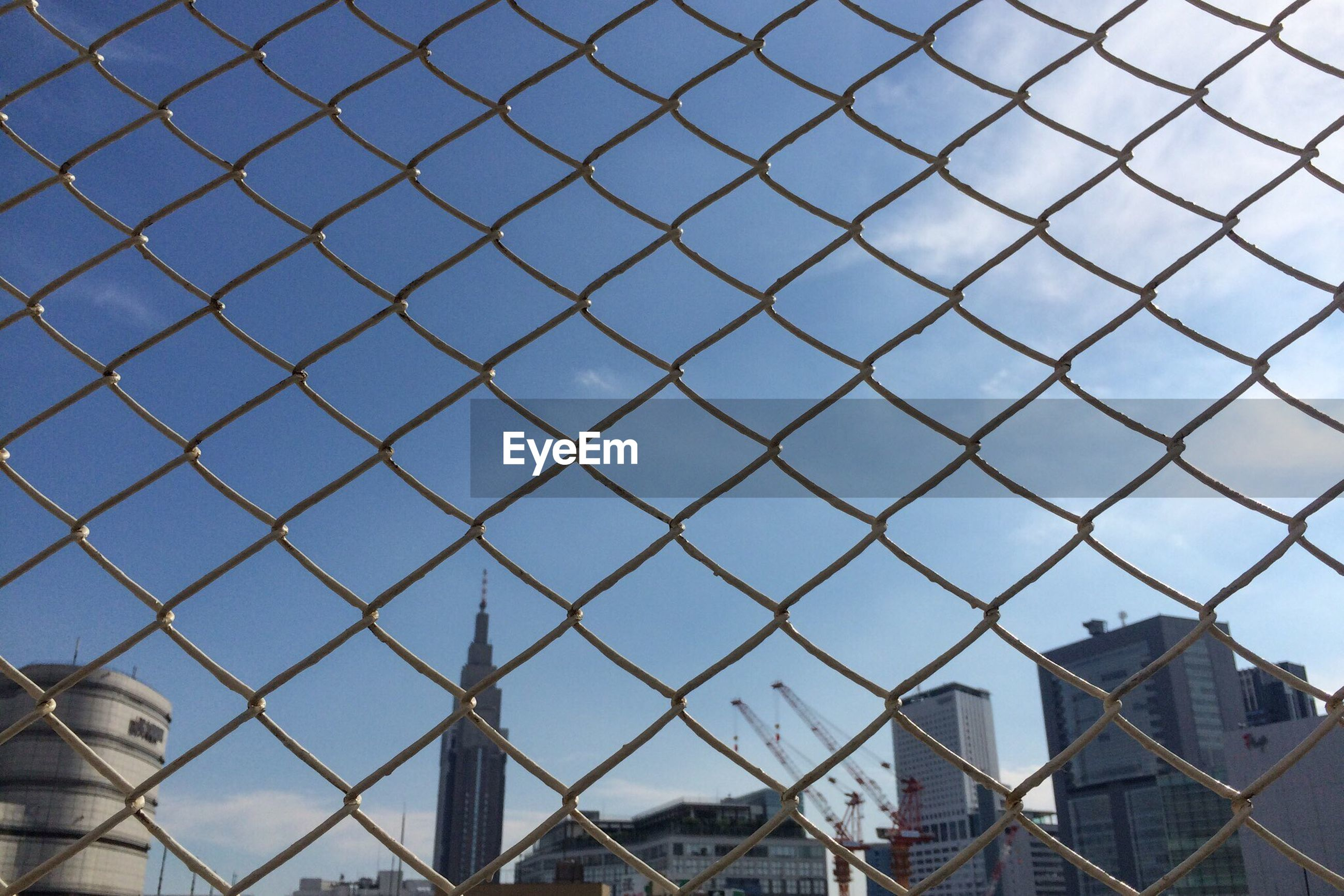 View of city buildings seen through wire mesh