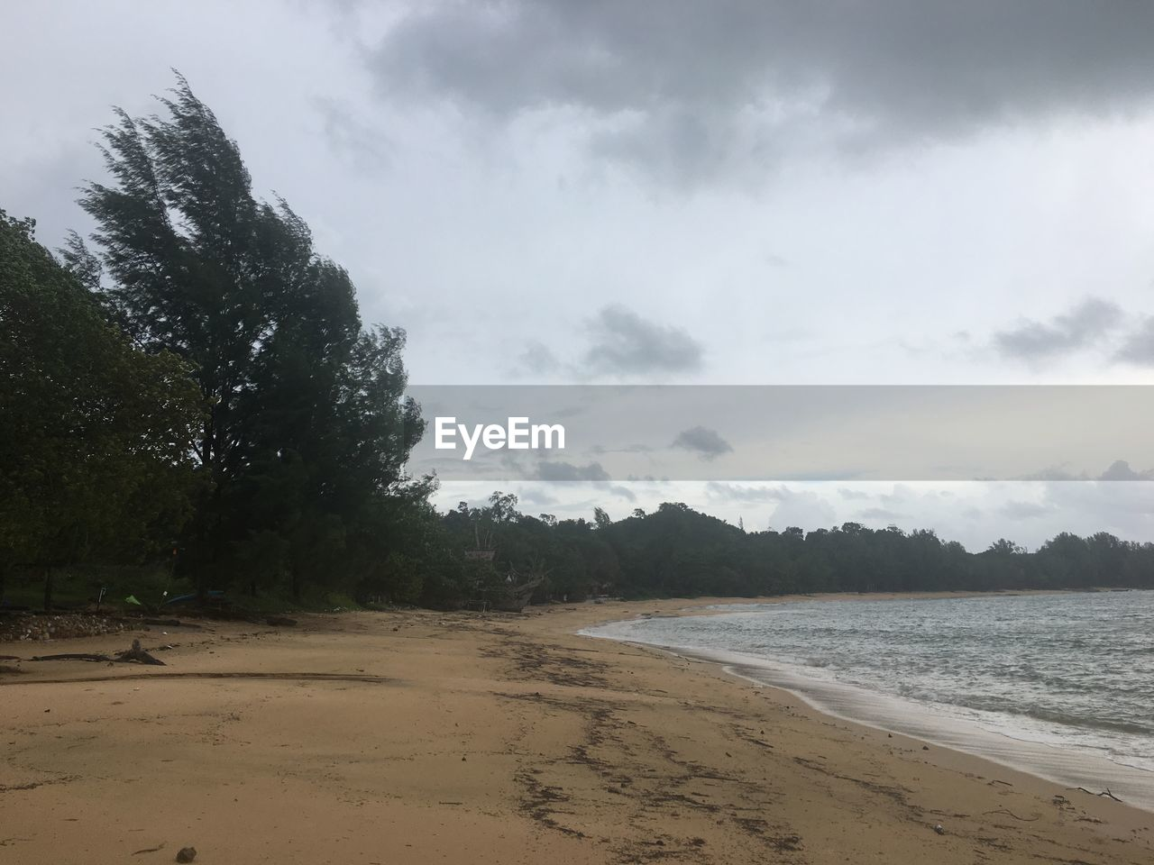 sand, beach, sky, nature, scenics, water, sea, beauty in nature, cloud - sky, tranquility, no people, tree, outdoors, day