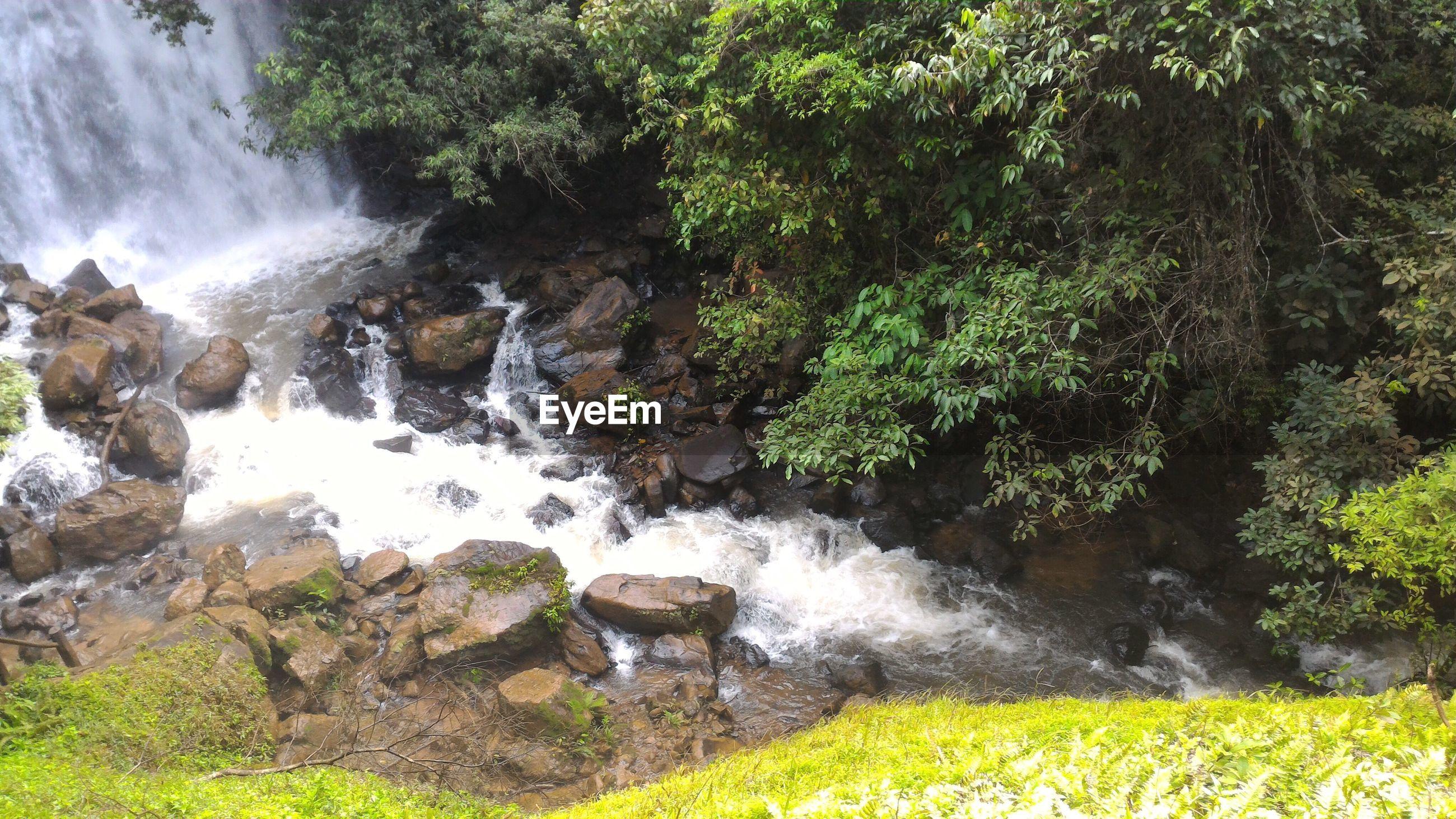 WATER FLOWING THROUGH ROCKS IN PARK