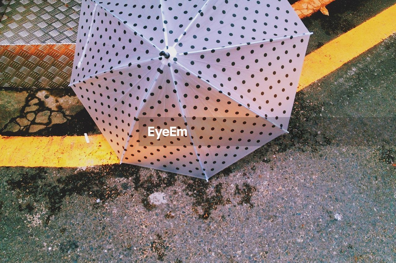 Spotted umbrella on street