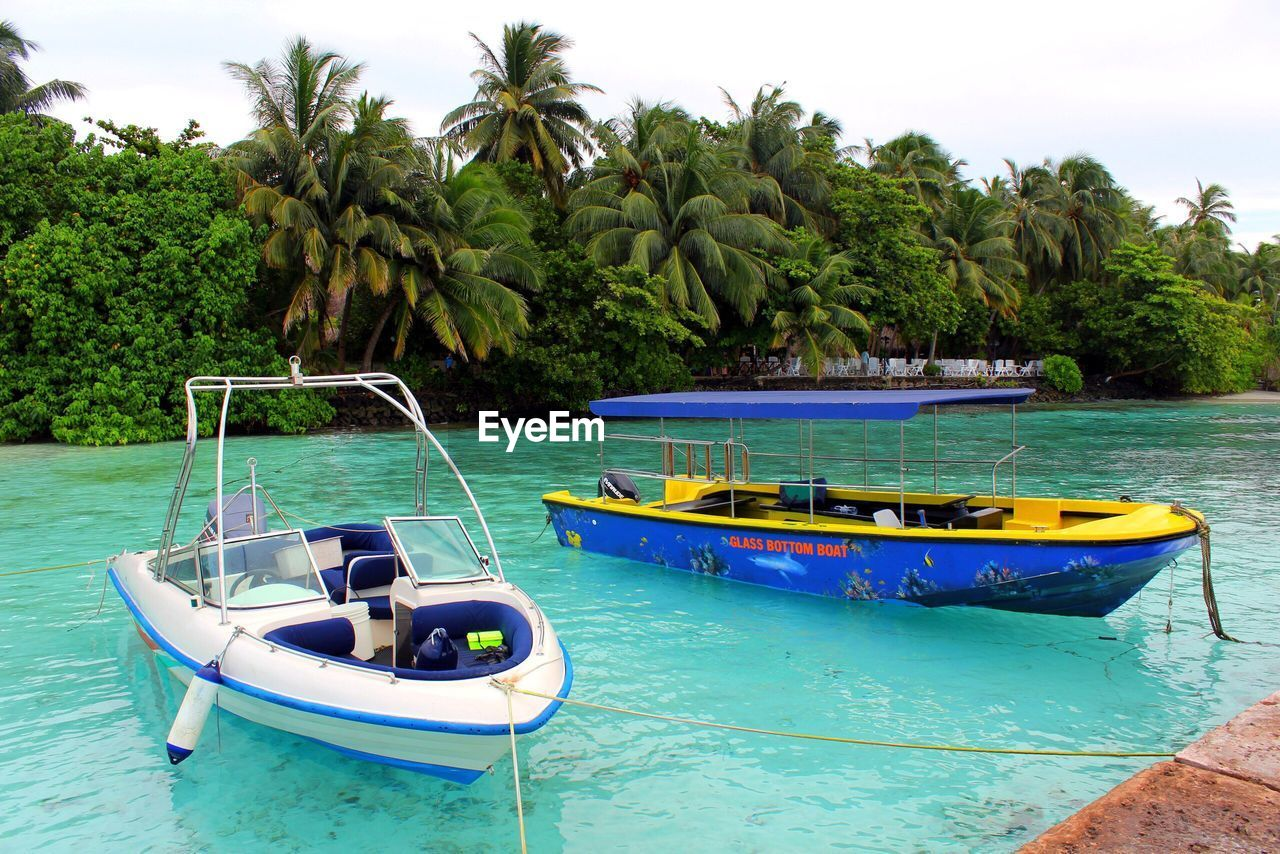 nautical vessel, water, mode of transportation, tree, transportation, plant, tropical climate, nature, palm tree, sea, sky, moored, day, beauty in nature, scenics - nature, outdoors, growth, no people, land