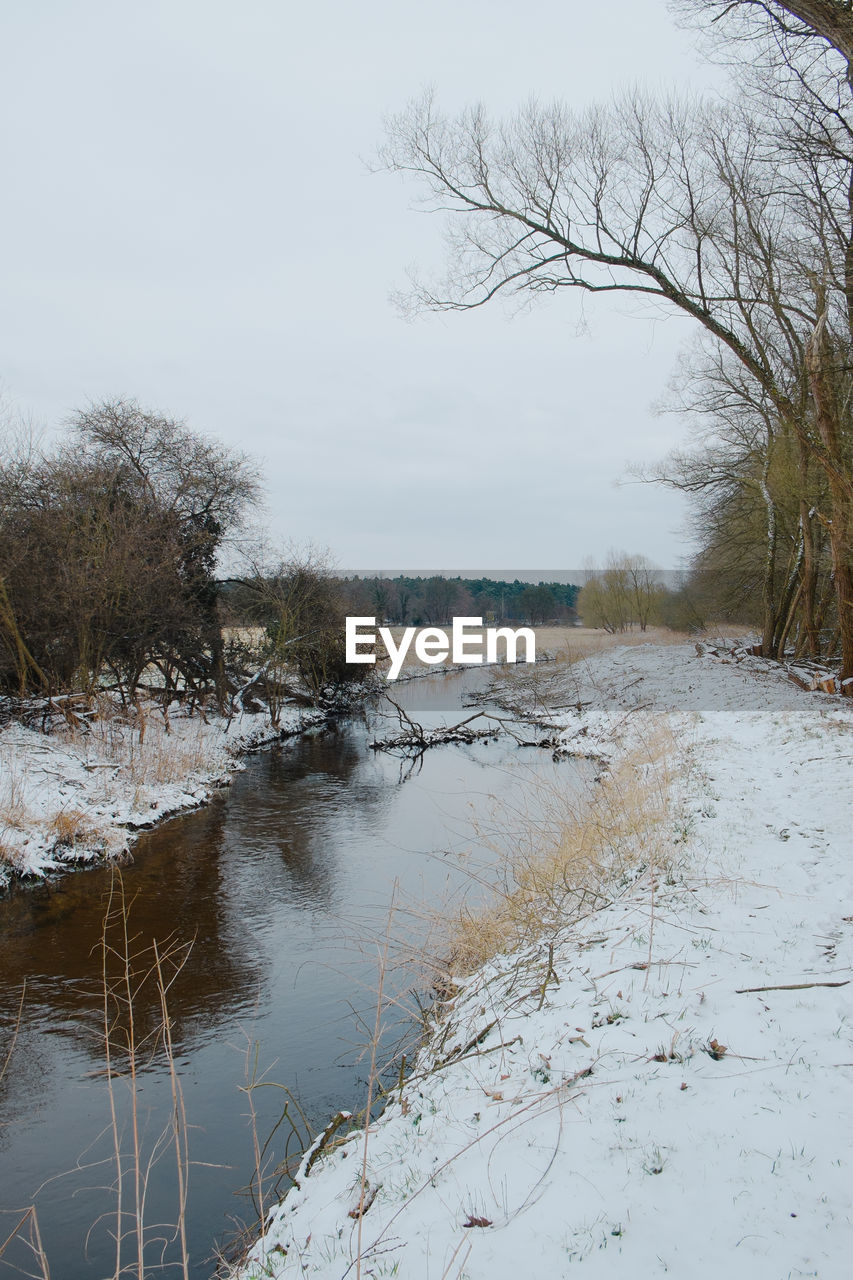 tree, winter, nature, snow, cold temperature, tranquility, water, bare tree, tranquil scene, beauty in nature, scenics, no people, landscape, river, day, outdoors, riverbank, sky, branch, grass