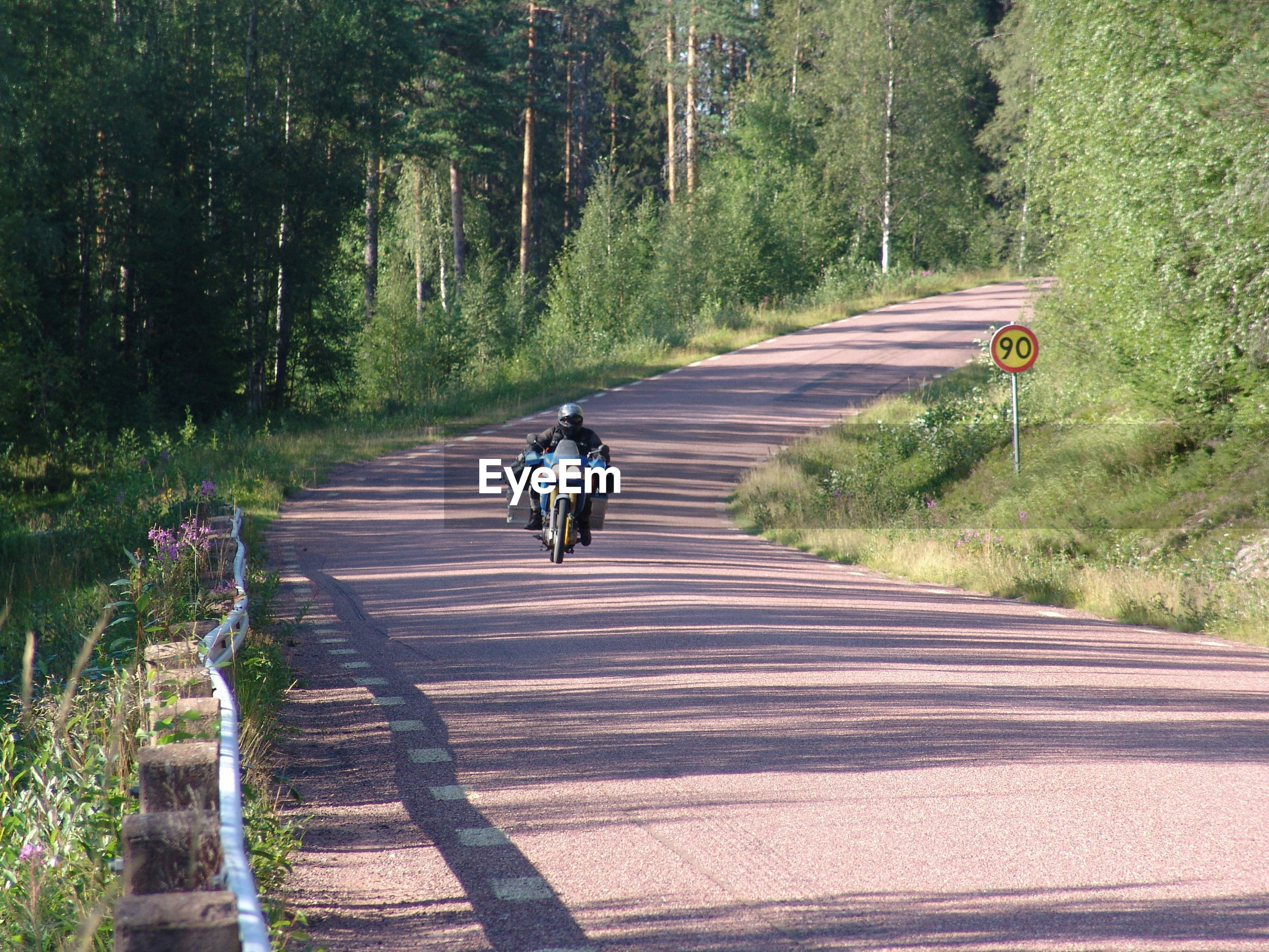 Person riding bicycle on street amidst trees