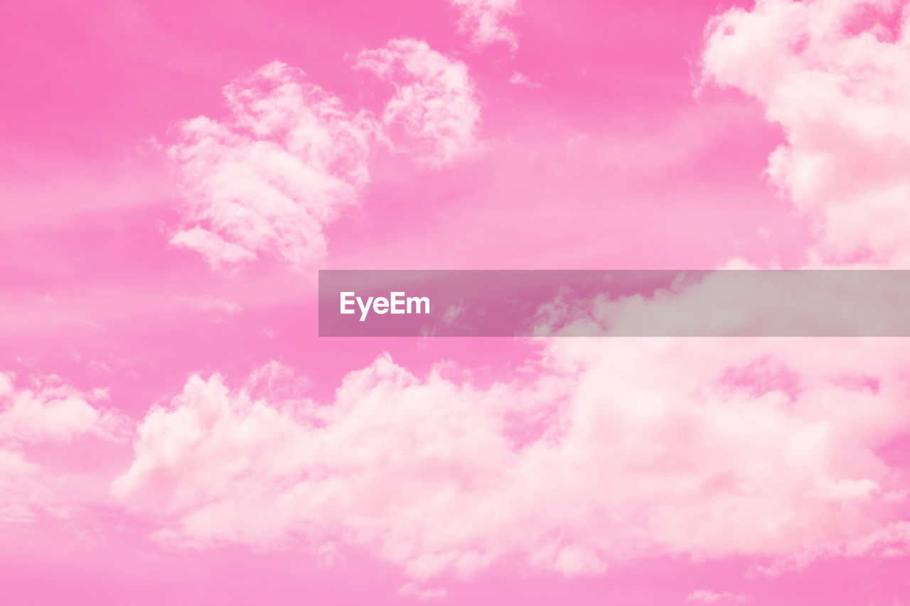 pink color, beauty in nature, cloud - sky, nature, backgrounds, no people, sky, full frame, tranquility, outdoors, flower, low angle view, freshness, day, idyllic, scenics - nature, tranquil scene, flowering plant, close-up, fragility, softness, purple