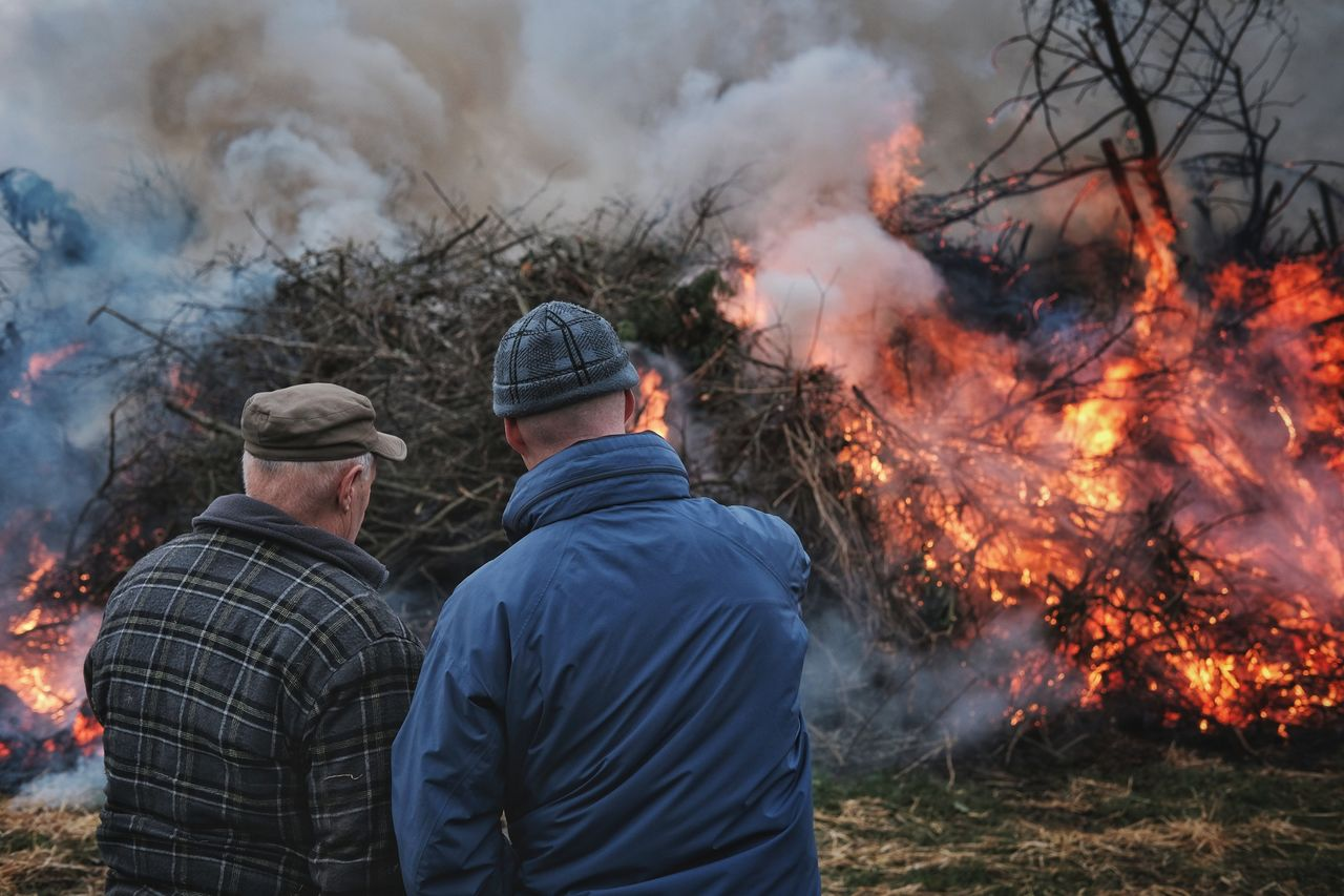 burning, fire, fire - natural phenomenon, flame, heat - temperature, men, smoke - physical structure, real people, nature, tree, rear view, two people, day, togetherness, plant, people, lifestyles, communication, forest, standing, outdoors, bonfire