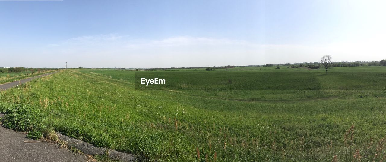 field, landscape, agriculture, tranquil scene, grass, green color, tranquility, nature, sky, scenics, rural scene, no people, beauty in nature, growth, outdoors, day