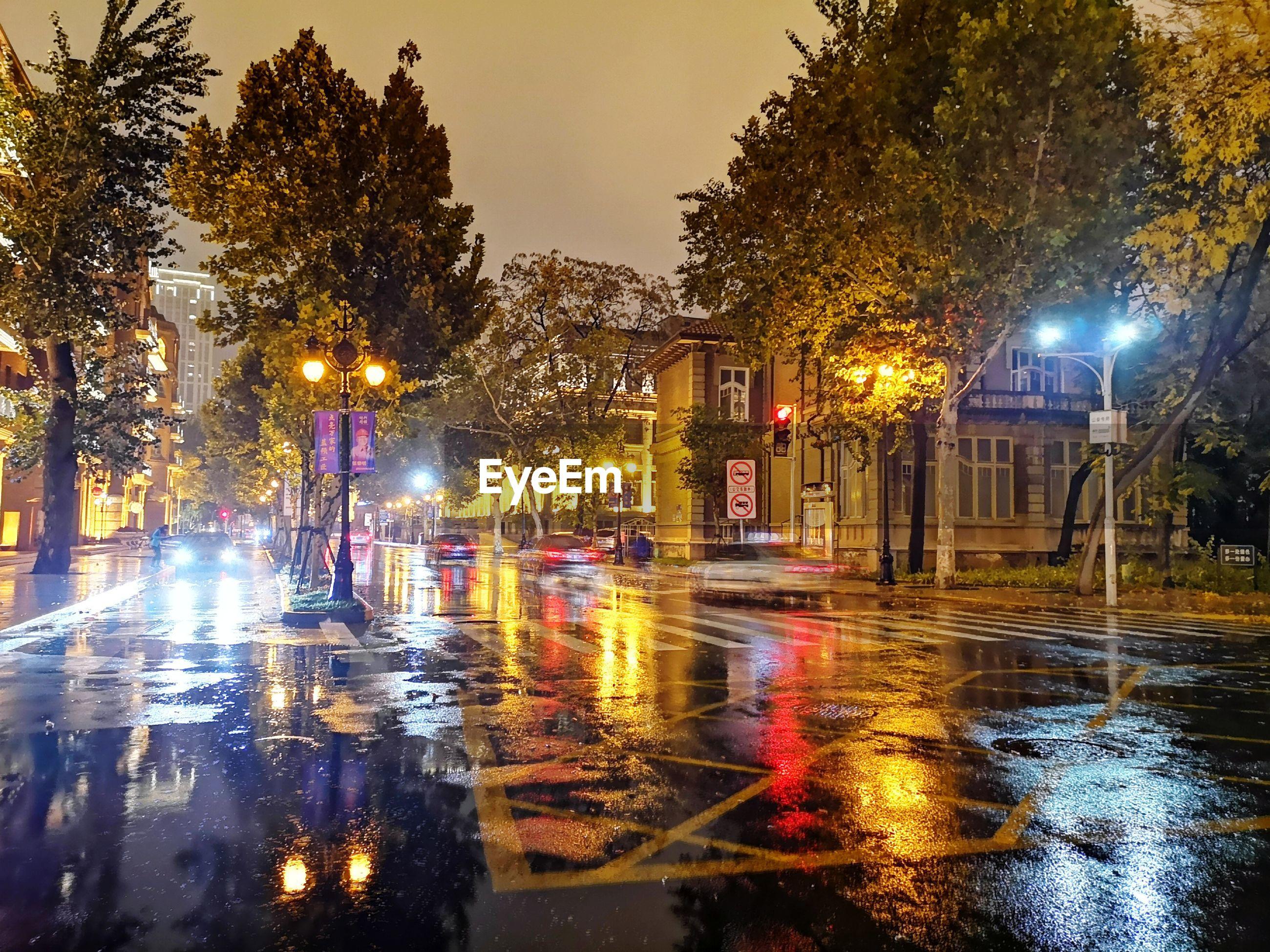 ILLUMINATED CITY STREET DURING RAINY SEASON