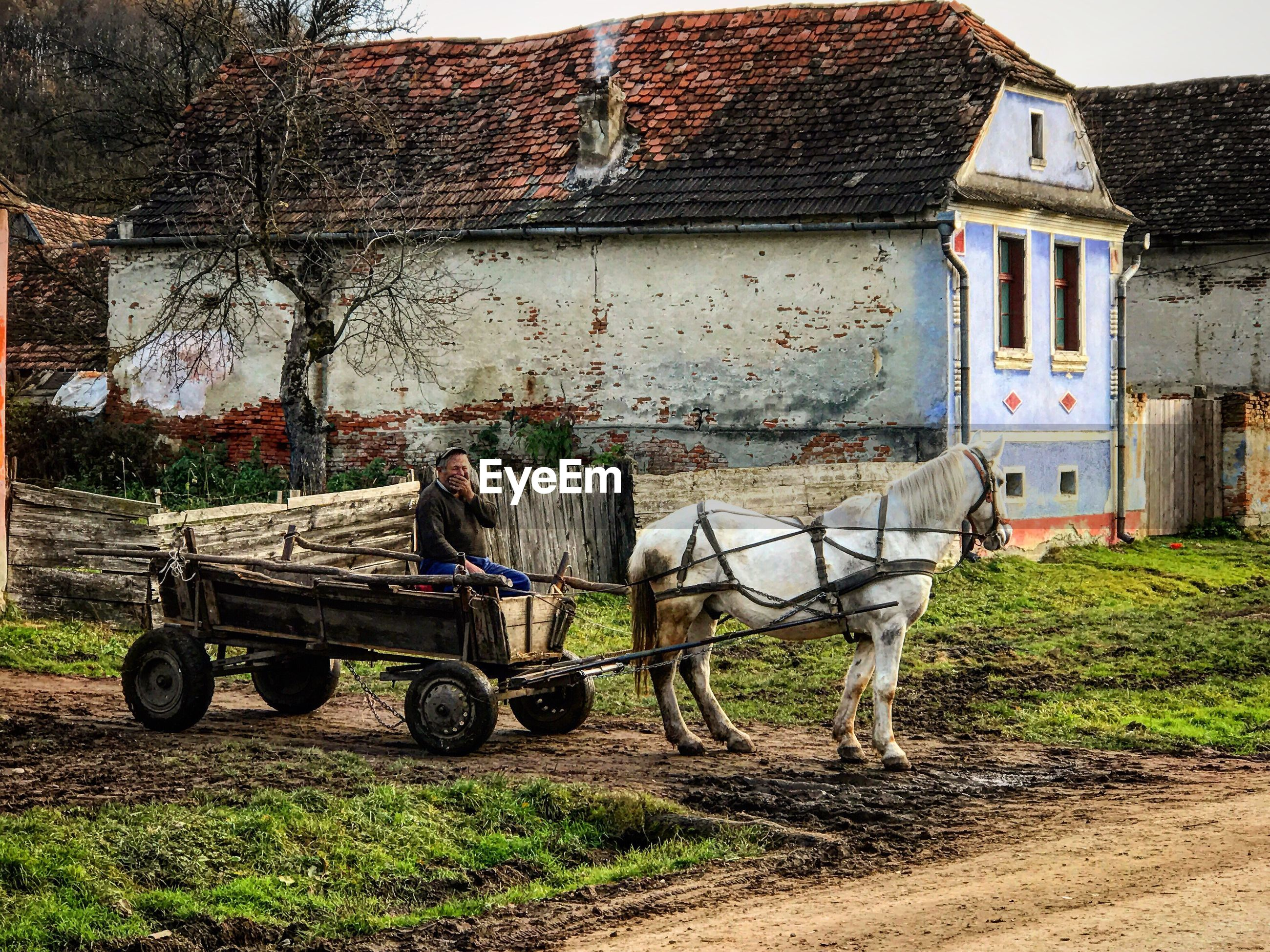built structure, transportation, building exterior, land vehicle, mode of transport, house, architecture, no people, outdoors, day, tree
