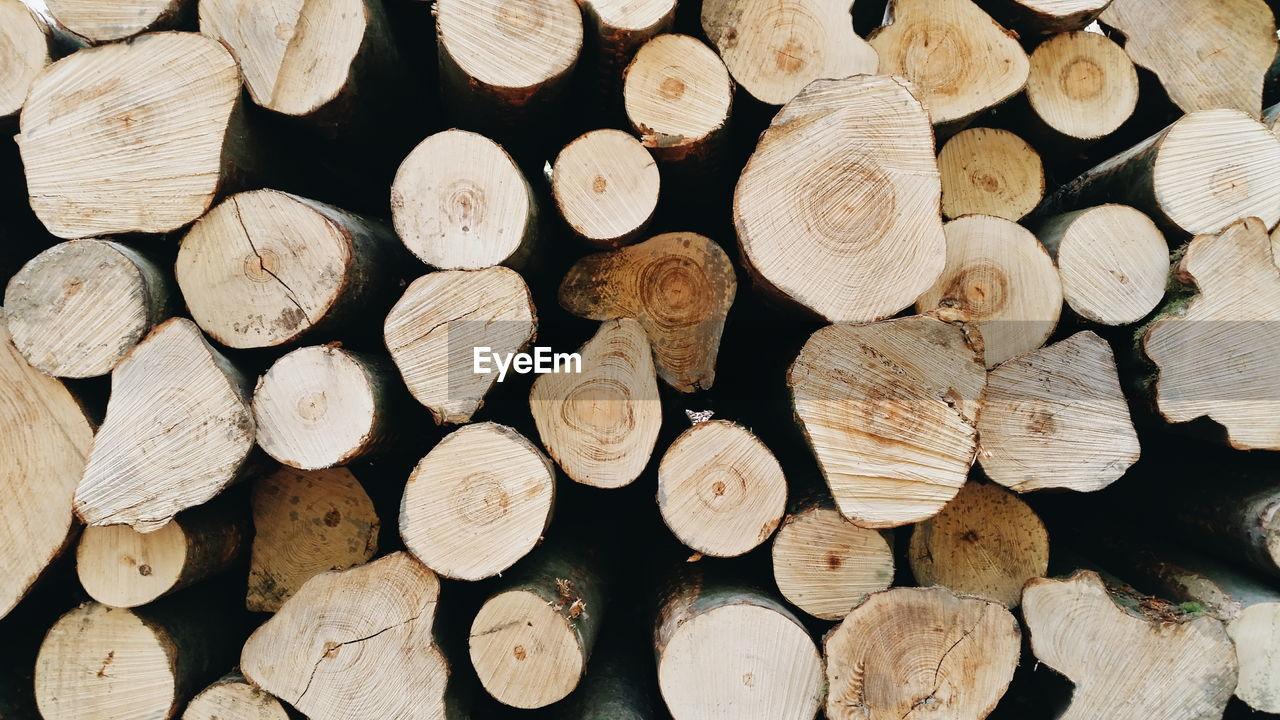 Detail Shot Of Firewood
