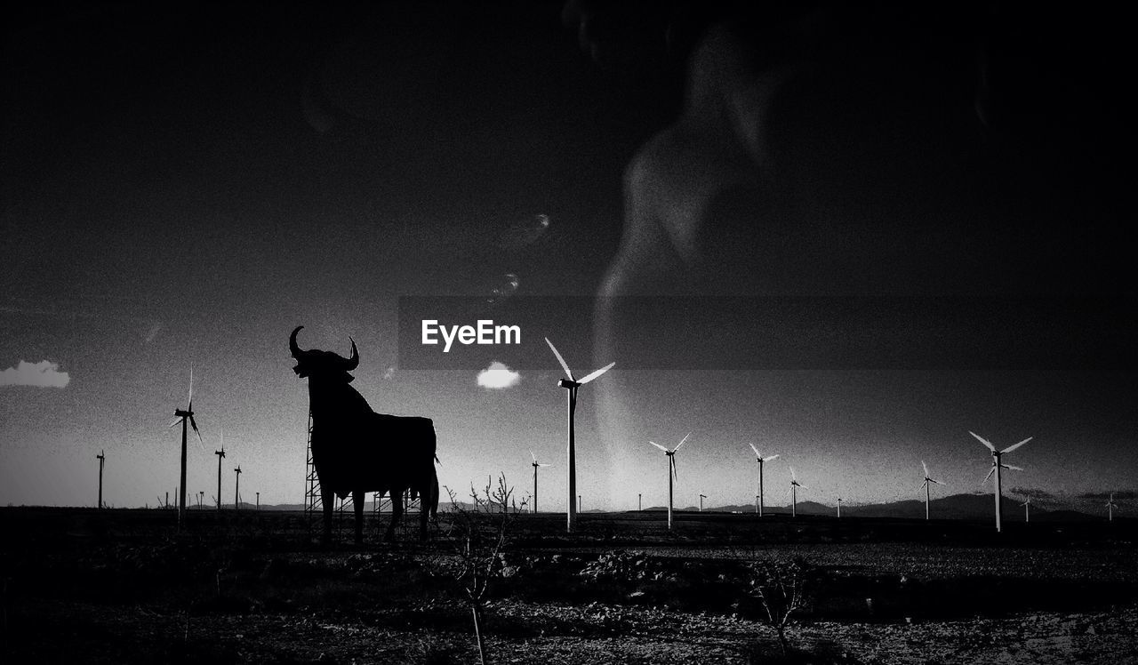 wind turbine, alternative energy, environmental conservation, wind power, fuel and power generation, renewable energy, windmill, nature, domestic animals, real people, sky, field, outdoors, silhouette, night, mammal, men, beauty in nature, one person, industrial windmill, people
