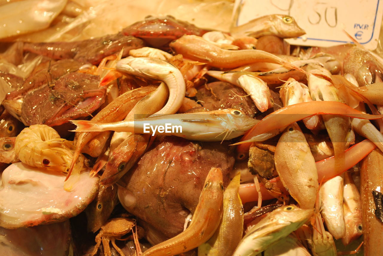 seafood, food and drink, food, freshness, healthy eating, no people, indoors, close-up, prawn, ready-to-eat, shrimp, day