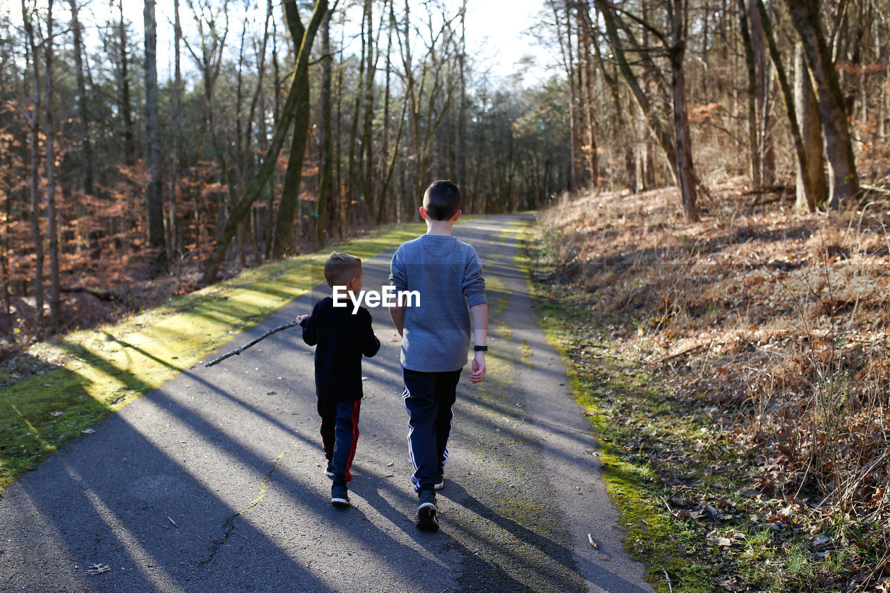 Rear view of boys walking on road in forest