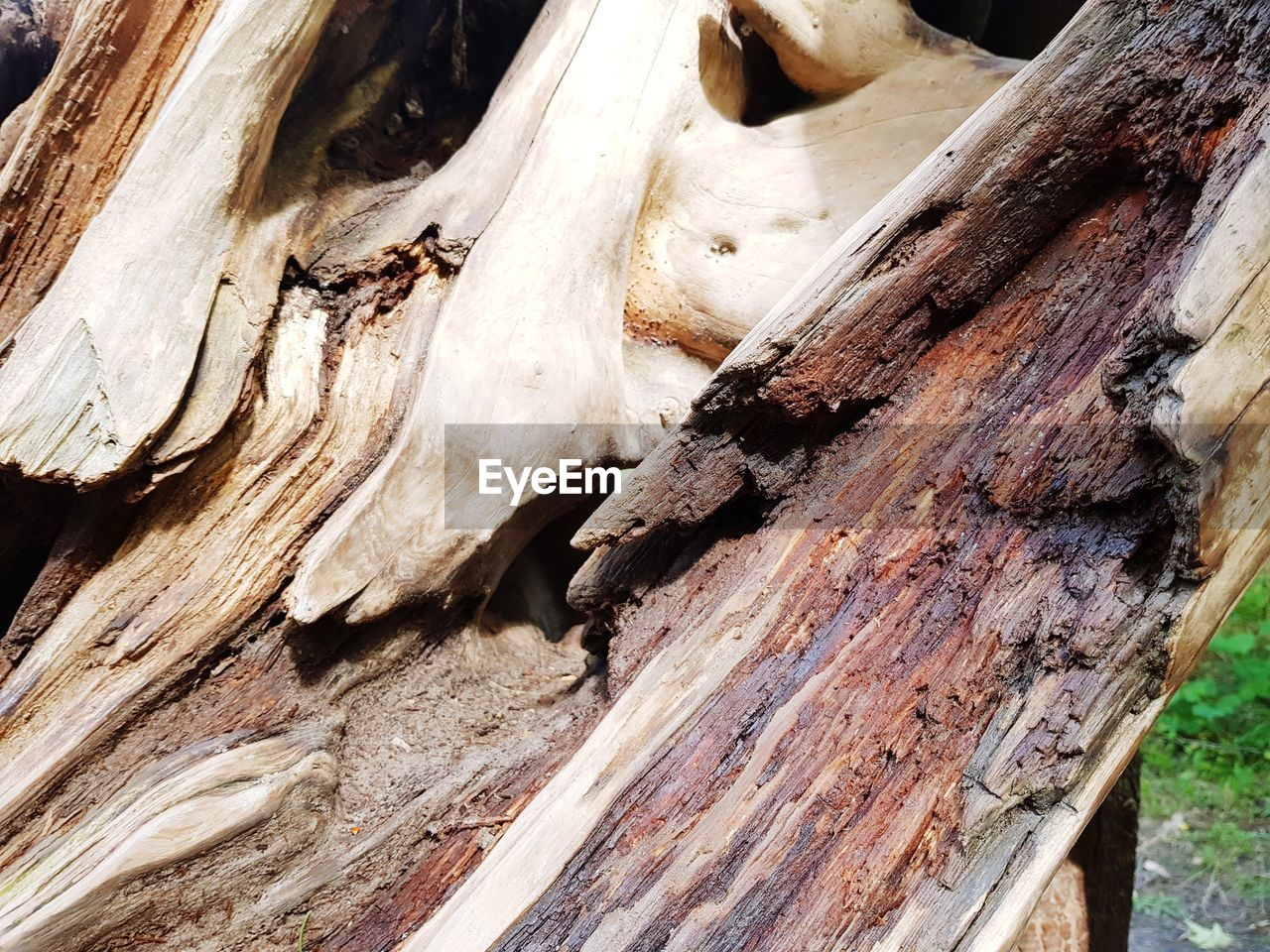 wood - material, tree trunk, textured, tree, nature, day, outdoors, close-up, pattern, no people, bark, backgrounds, full frame, dead tree
