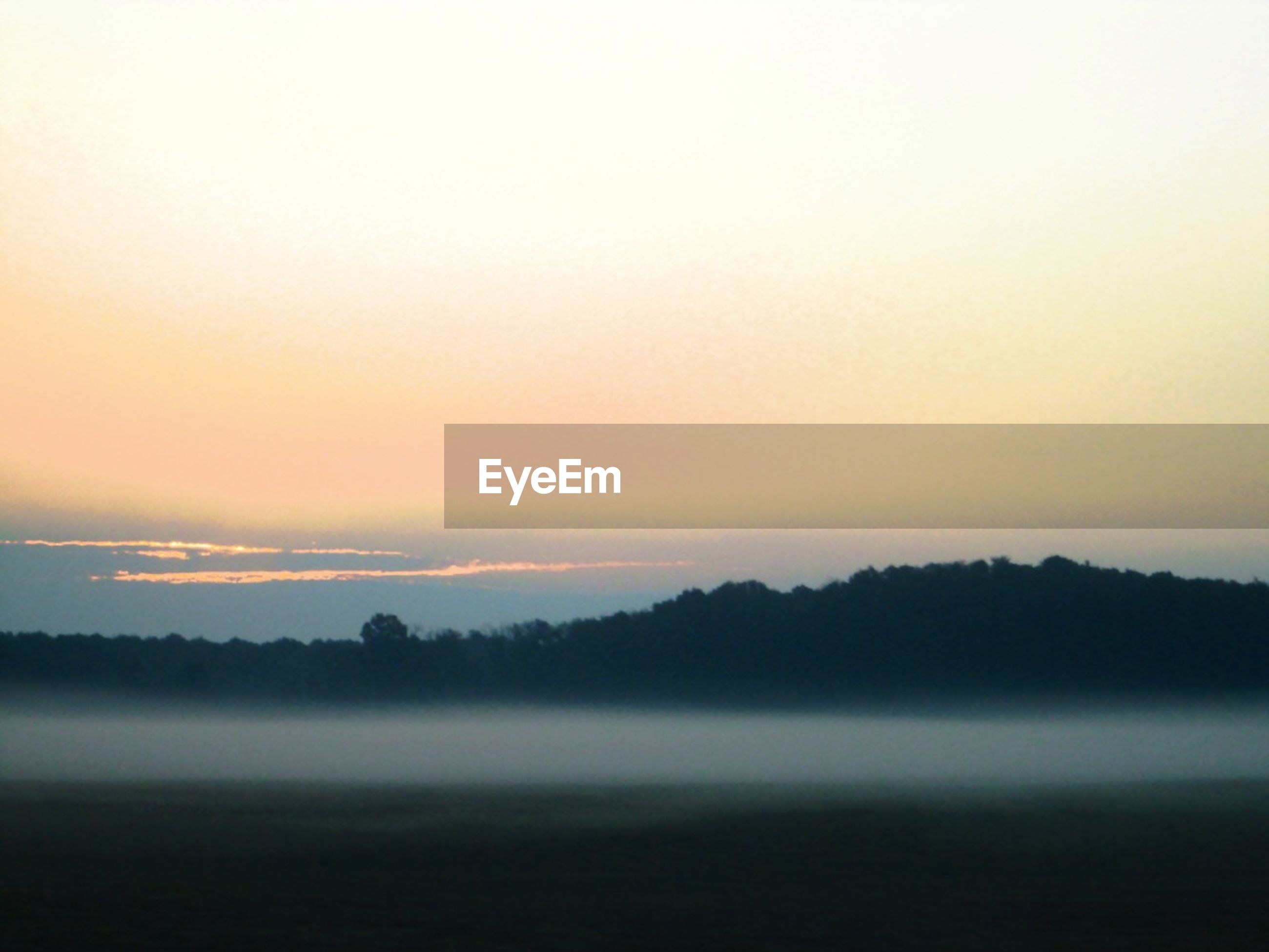 fog, tranquil scene, copy space, tranquility, scenics, foggy, sunset, beauty in nature, landscape, nature, idyllic, weather, silhouette, sky, dusk, mist, field, tree, outdoors