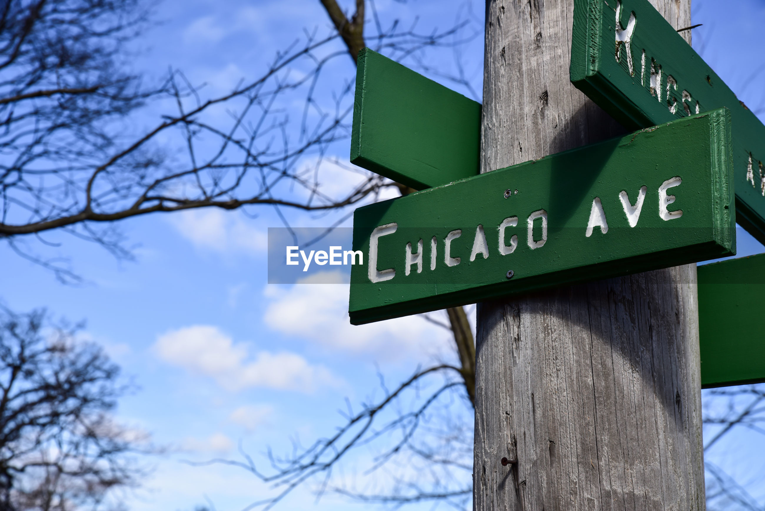 Low angle view of road sign on tree against sky