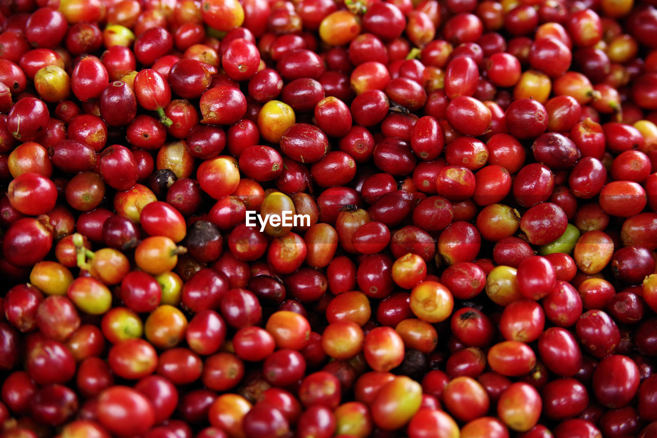 Full Frame Shot Of Raw Coffee Beans