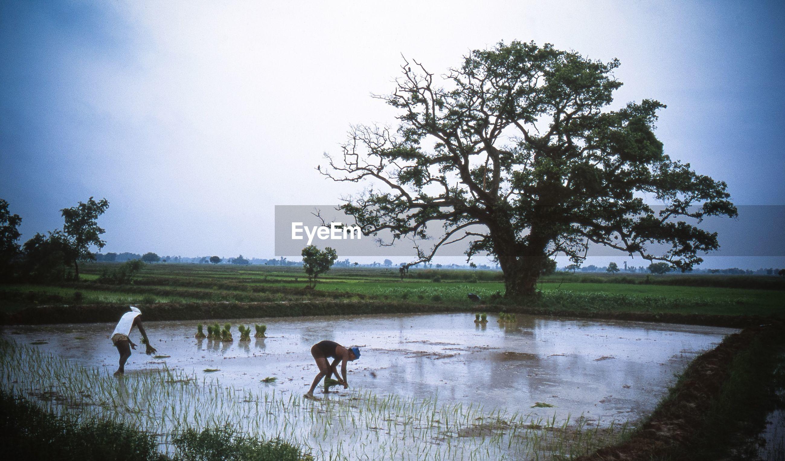 Farmers working on wet field against sky