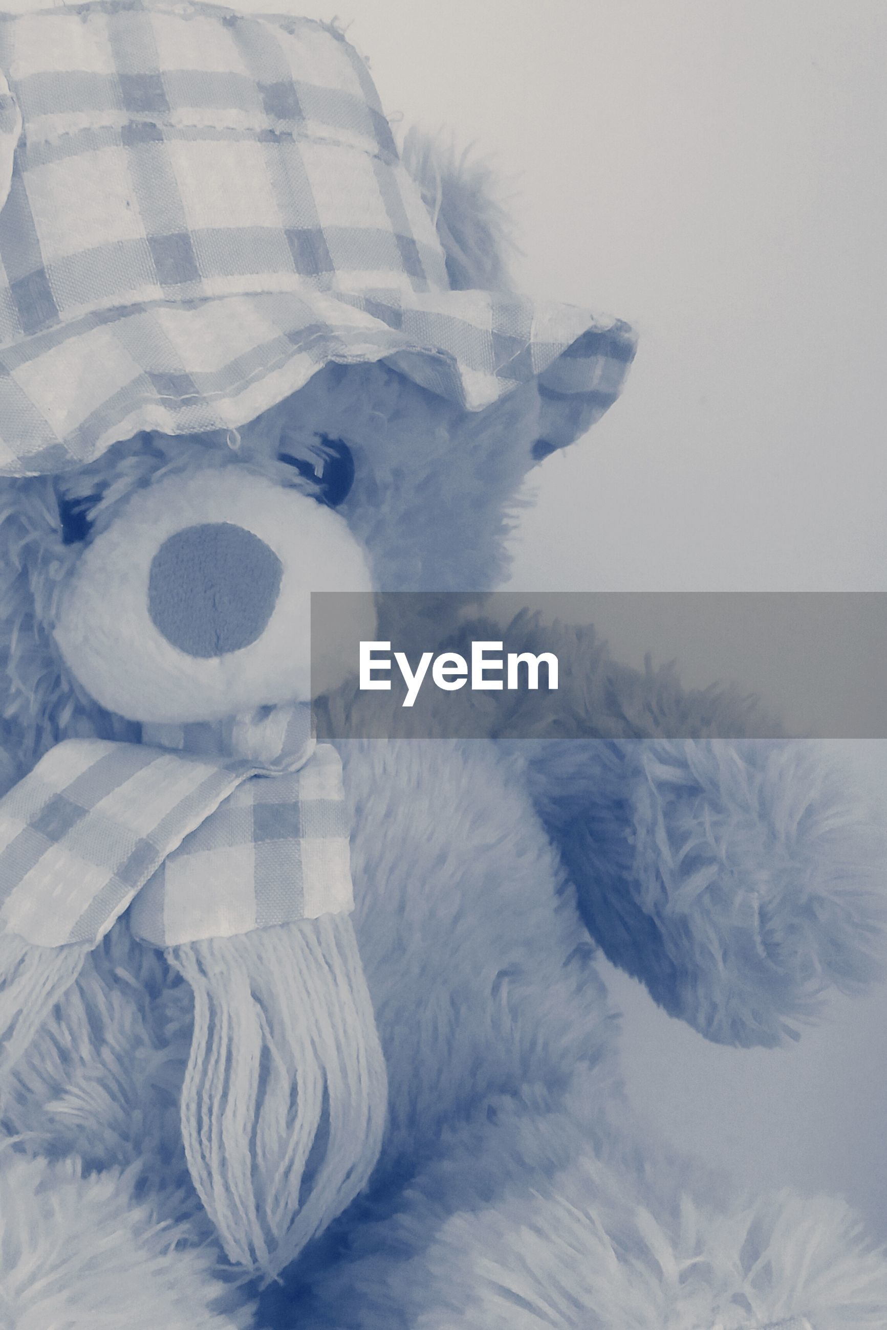 white color, animal representation, snow, winter, art and craft, art, creativity, cold temperature, human representation, covering, indoors, one animal, high angle view, white, no people, animal themes, toy, nature, stuffed toy, close-up