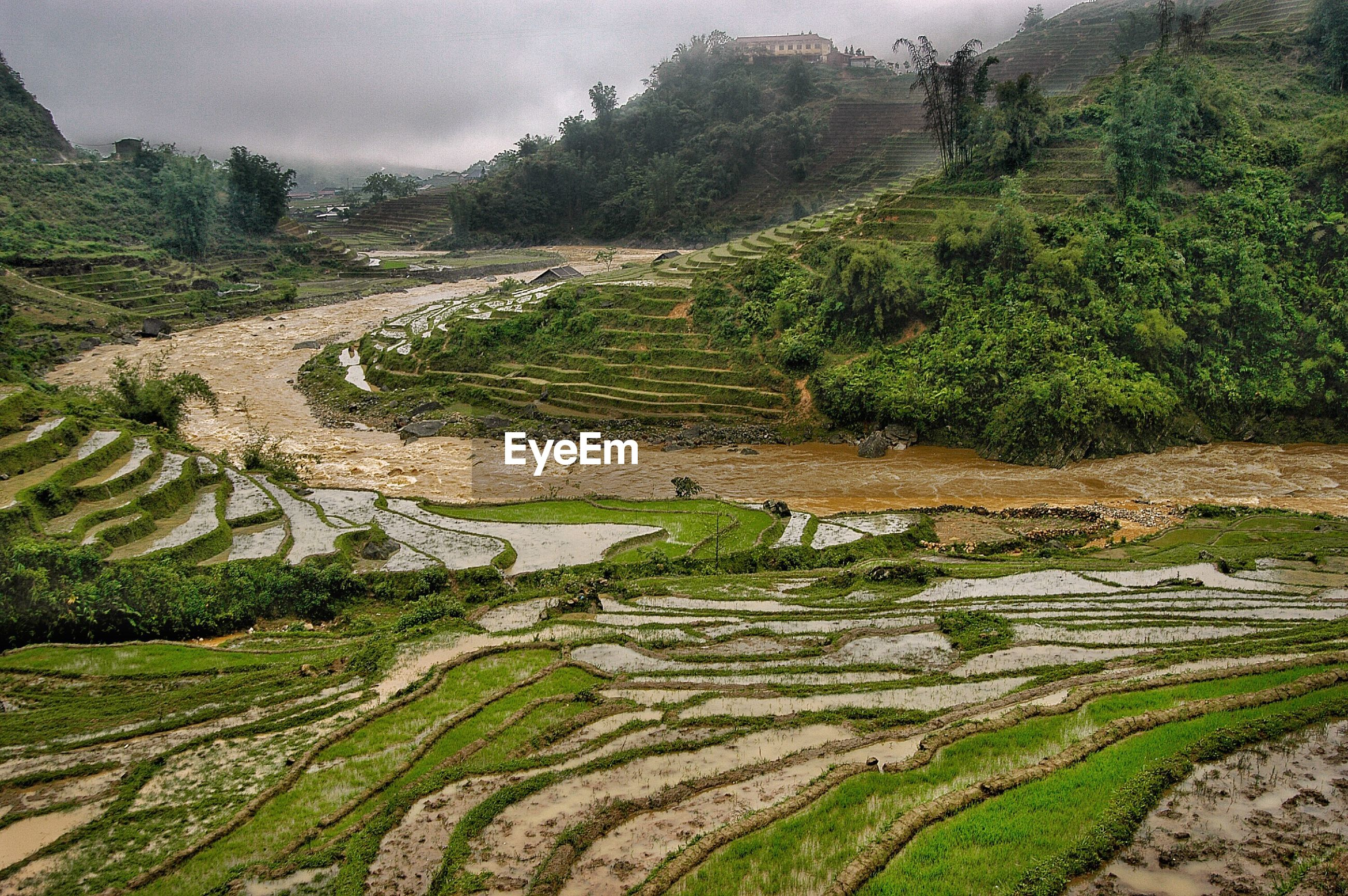 High angel view of terraced farms