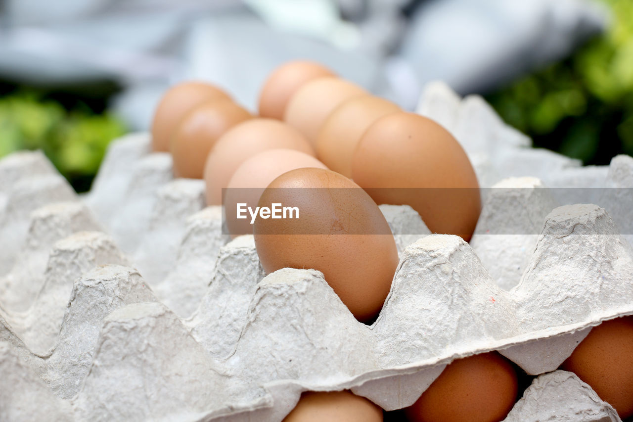 egg, healthy eating, wellbeing, food, food and drink, raw food, close-up, freshness, focus on foreground, vulnerability, fragility, egg carton, no people, nature, animal egg, brown, still life, white color, group of objects, day, outdoors