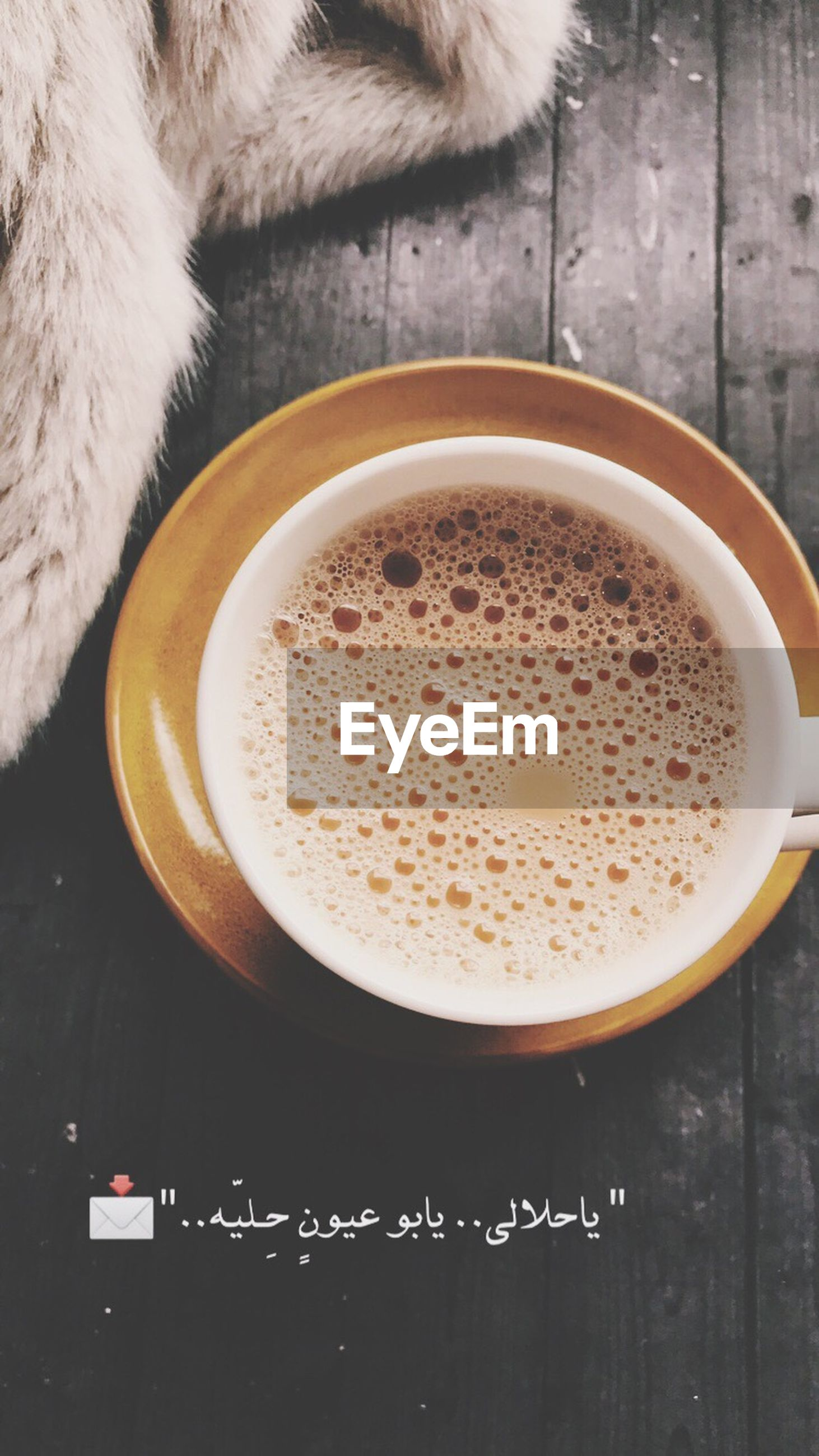 coffee cup, coffee - drink, drink, high angle view, animal themes, table, refreshment, indoors, no people, frothy drink, freshness, mammal, day