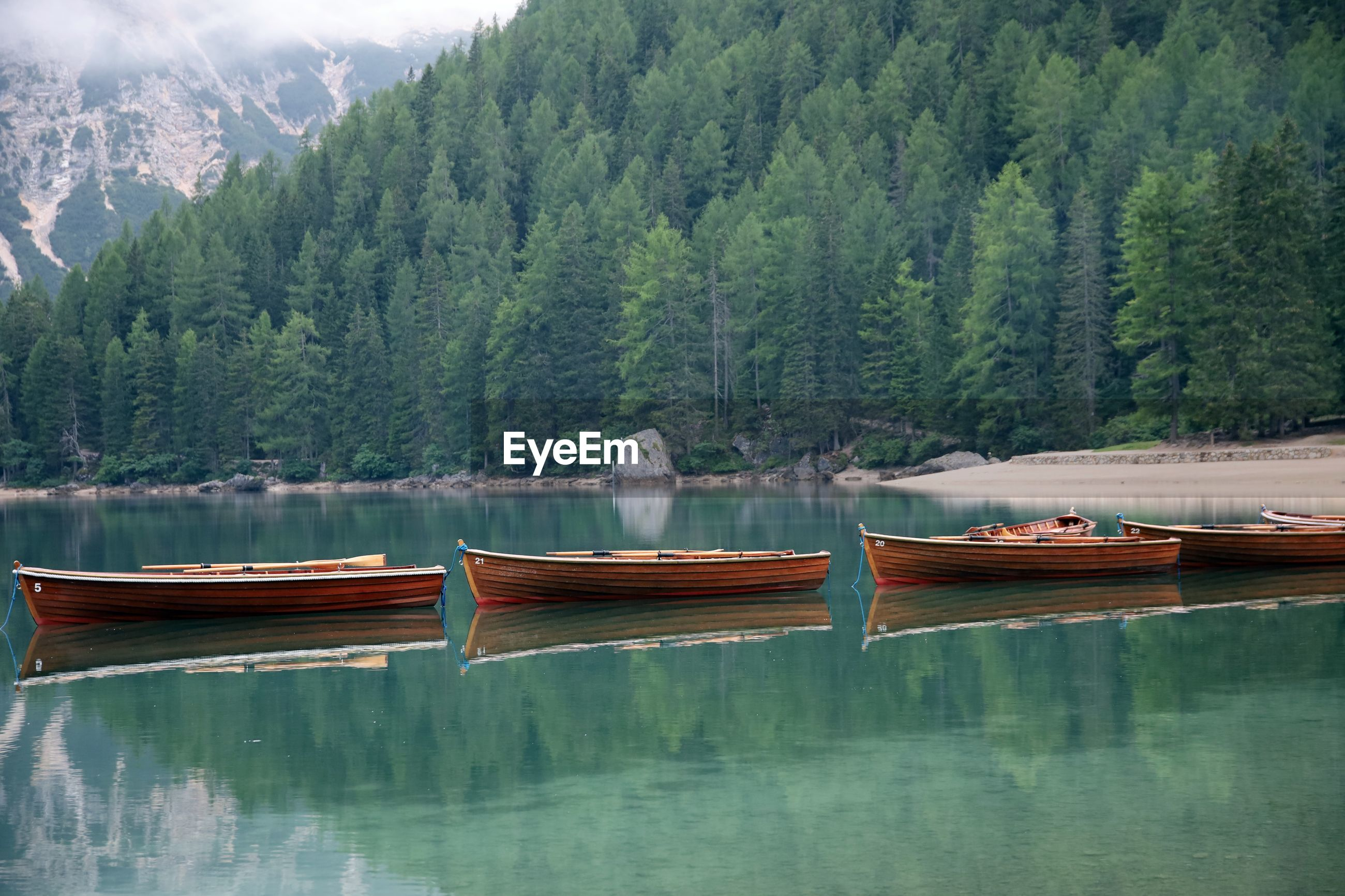 BOATS MOORED BY LAKE AGAINST TREES