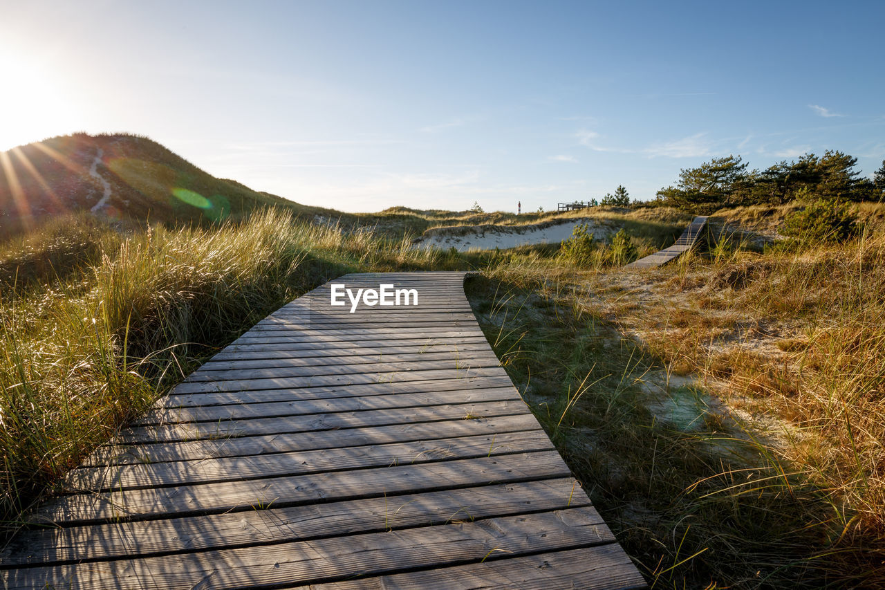 sky, grass, footpath, plant, the way forward, direction, nature, tranquility, tranquil scene, sunlight, boardwalk, no people, beauty in nature, environment, scenics - nature, day, land, landscape, wood - material, non-urban scene, outdoors, diminishing perspective, wood paneling, long, timothy grass