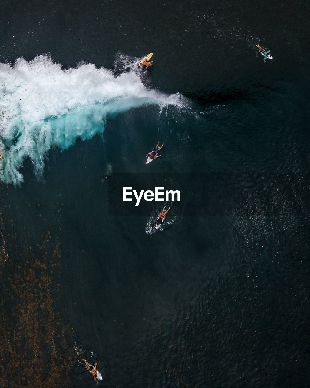 High Angle View Of People Surfboarding In Sea