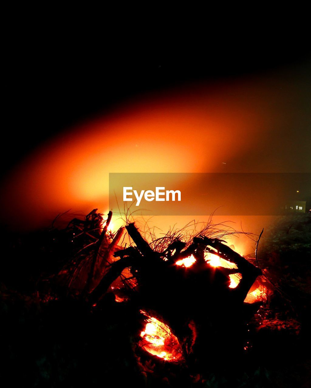 night, heat - temperature, tree, nature, fire, flame, orange color, burning, fire - natural phenomenon, no people, sky, plant, environment, bonfire, glowing, outdoors, beauty in nature, land, tranquility, log, campfire, power in nature