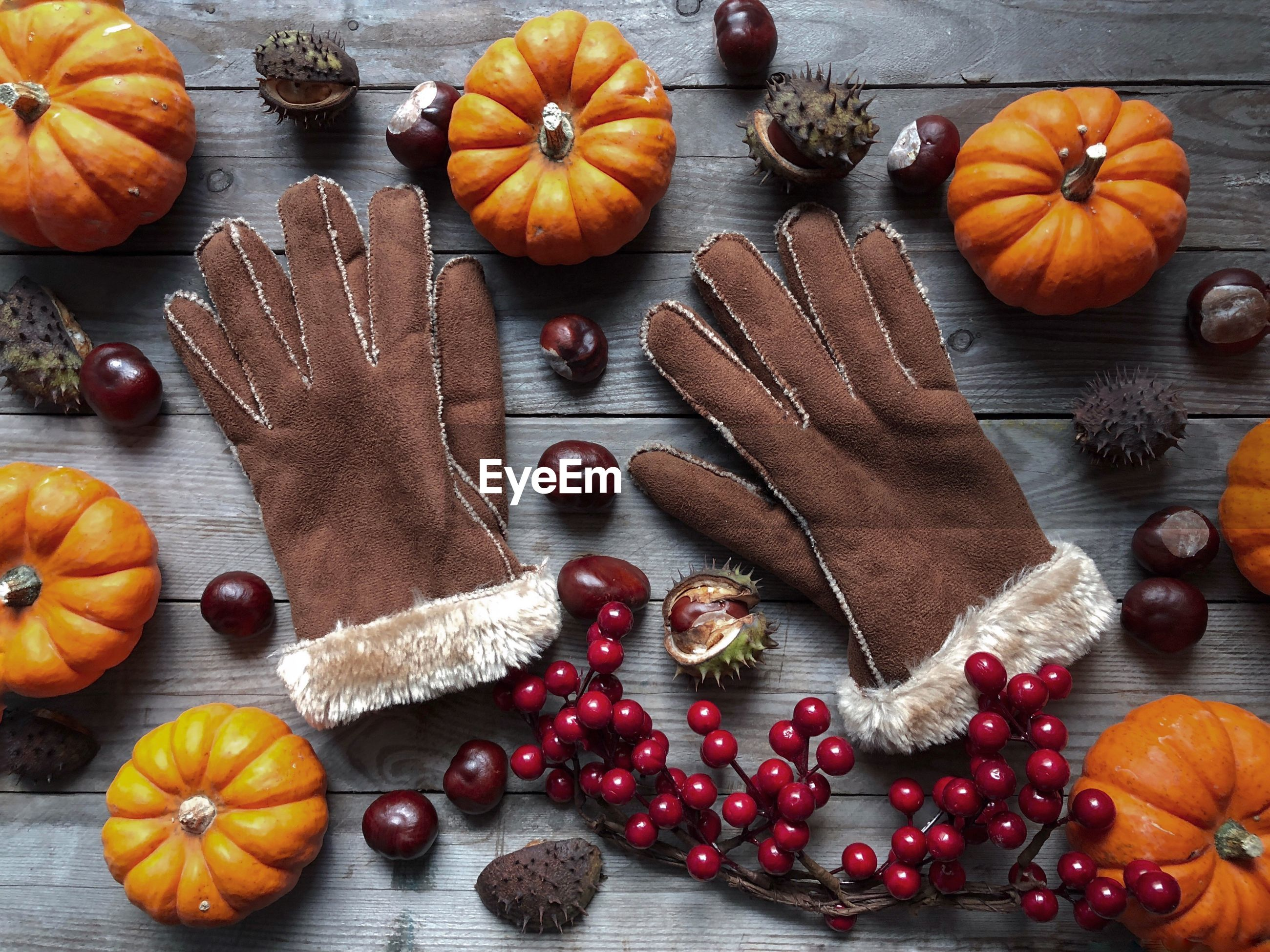 Directly above shot of gloves with pumpkins