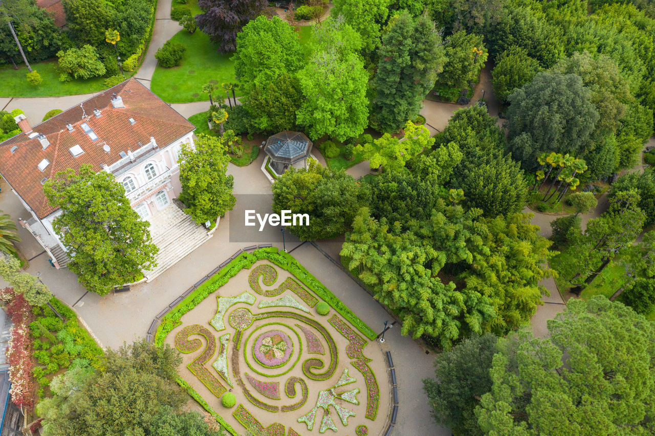 HIGH ANGLE VIEW OF TREES IN GARDEN