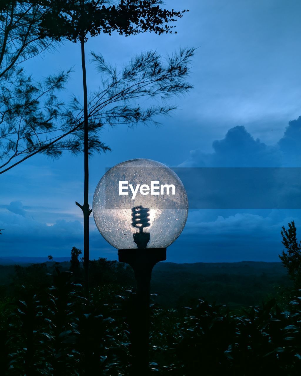 sky, tree, plant, cloud - sky, beauty in nature, nature, growth, dusk, silhouette, scenics - nature, no people, land, outdoors, tranquility, sphere, tranquil scene, night, non-urban scene, blue, idyllic