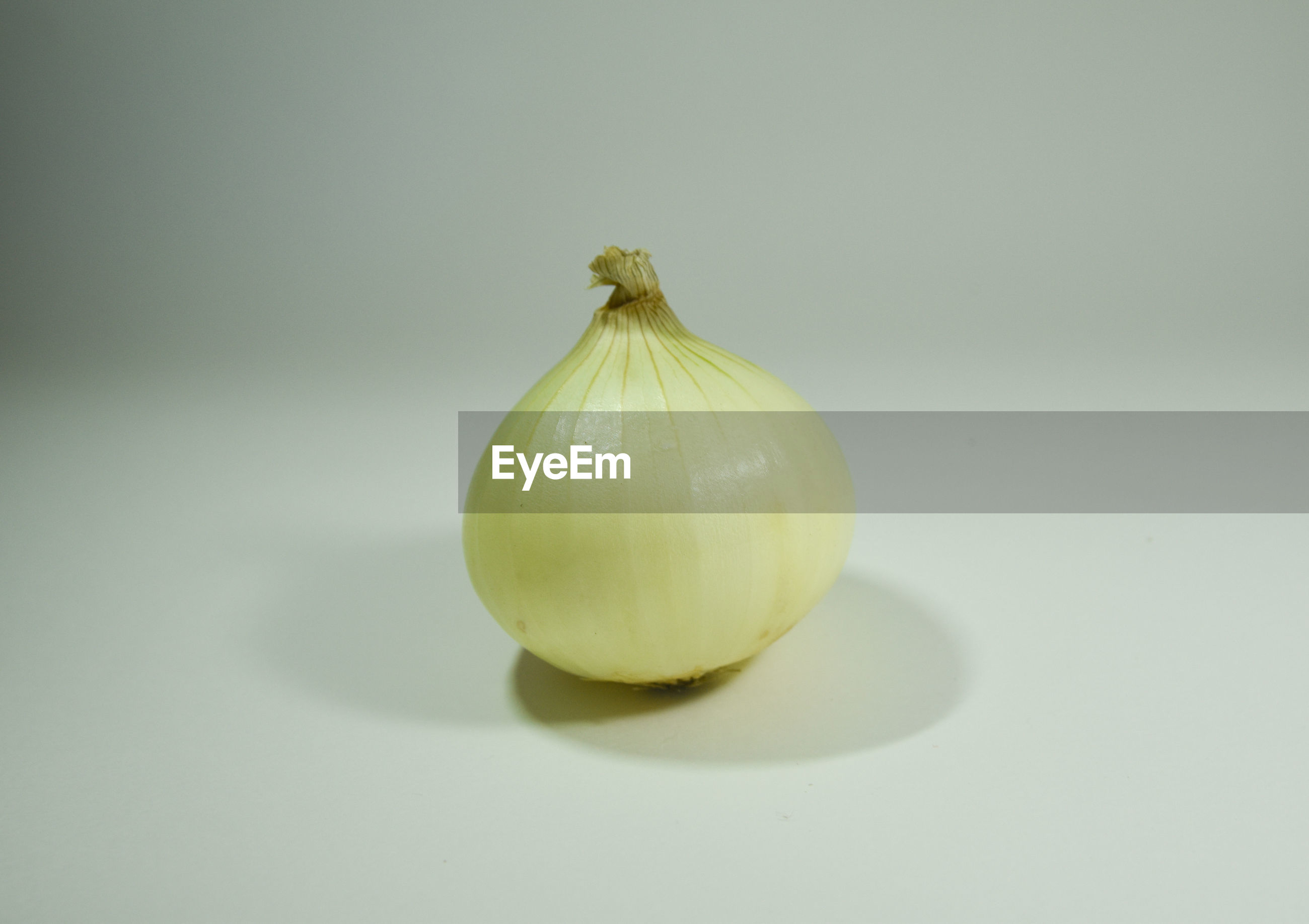 Close-up of  onion white background