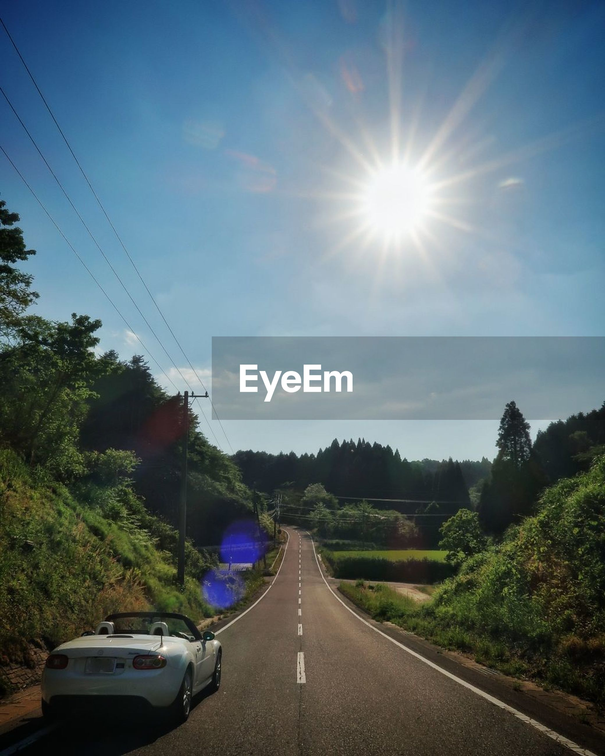 road, transportation, sun, tree, sky, lens flare, the way forward, sunlight, car, outdoors, land vehicle, no people, day, nature, landscape