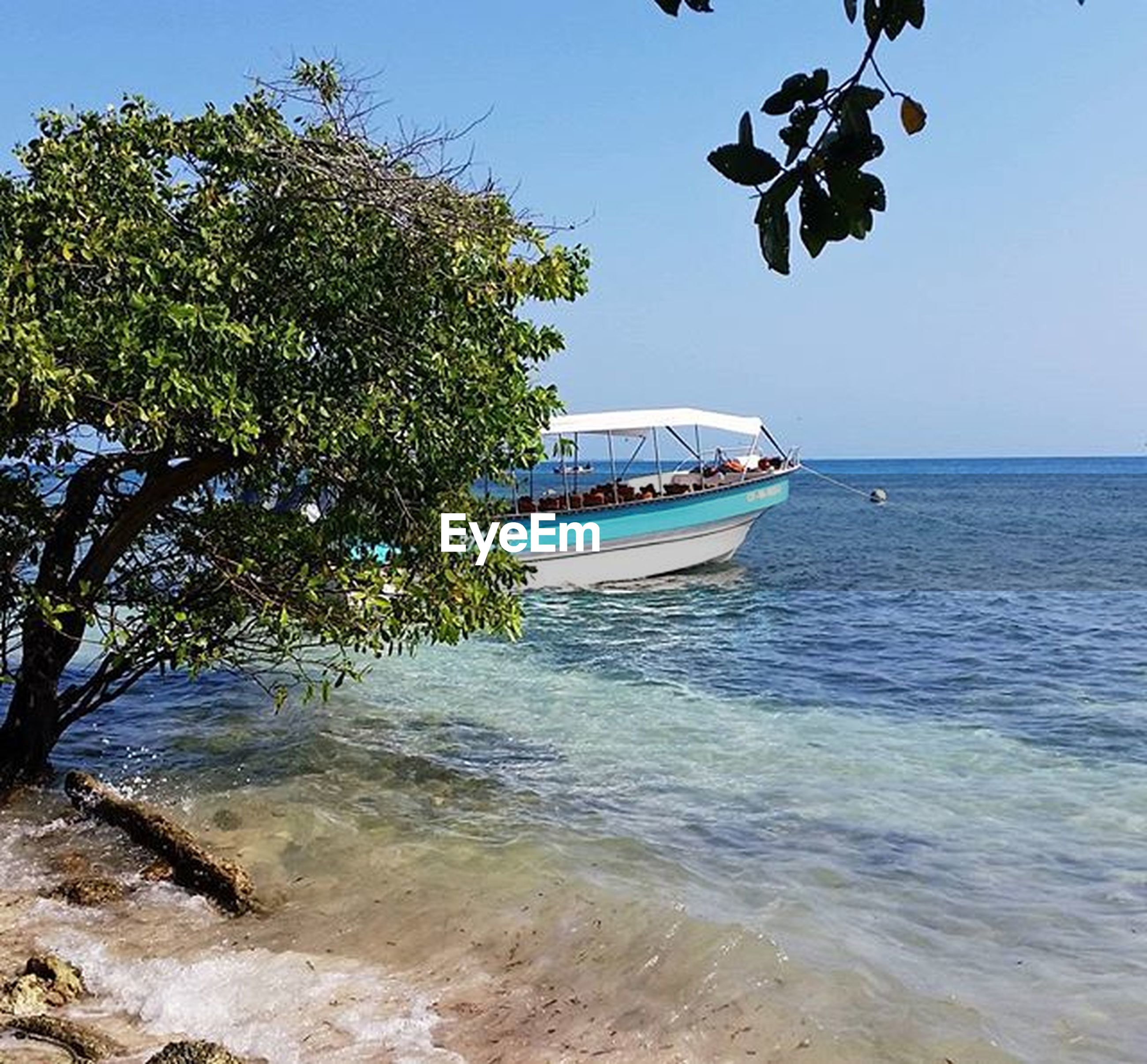 nautical vessel, water, sea, transportation, boat, mode of transport, clear sky, horizon over water, moored, tree, tranquil scene, blue, tranquility, nature, scenics, beauty in nature, beach, sky, travel, shore