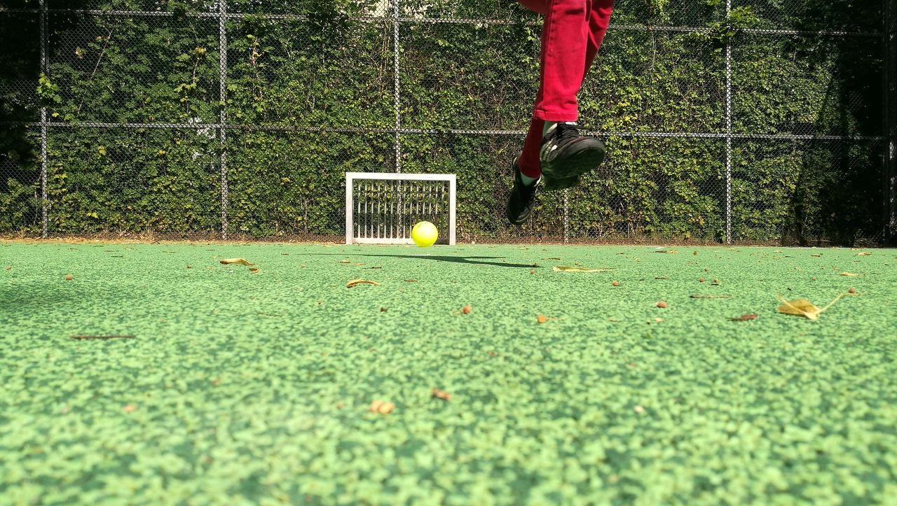 sport, ball, low section, plant, leisure activity, human leg, motion, green color, one person, playing, soccer ball, day, soccer, grass, team sport, real people, tennis, sports equipment, men, outdoors