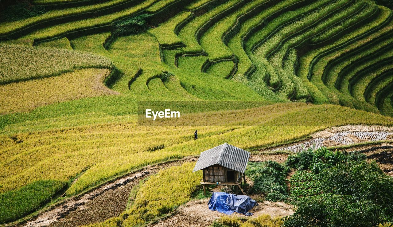 High Angle View Of Terraced Field In Mù Cang Ch?i