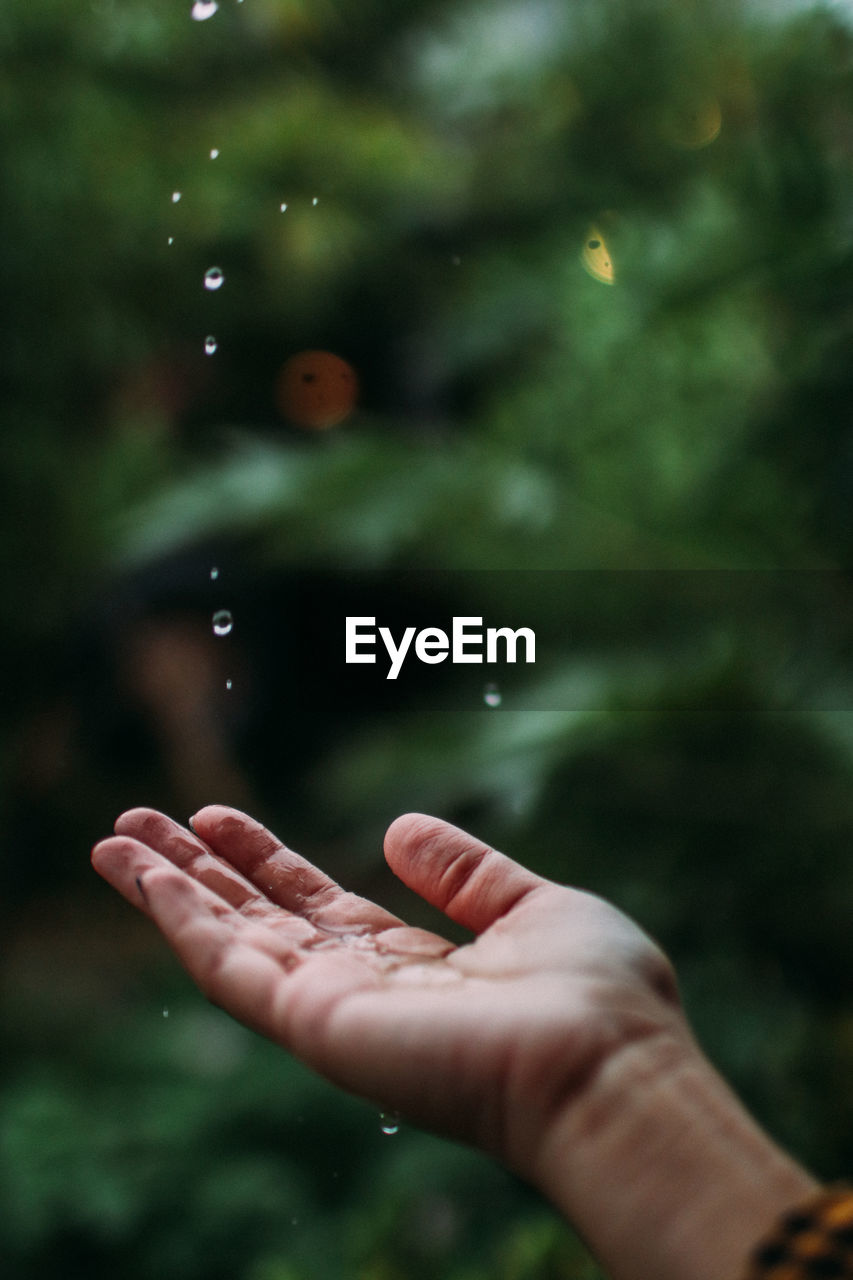 Close-up of person hand holding raindrops